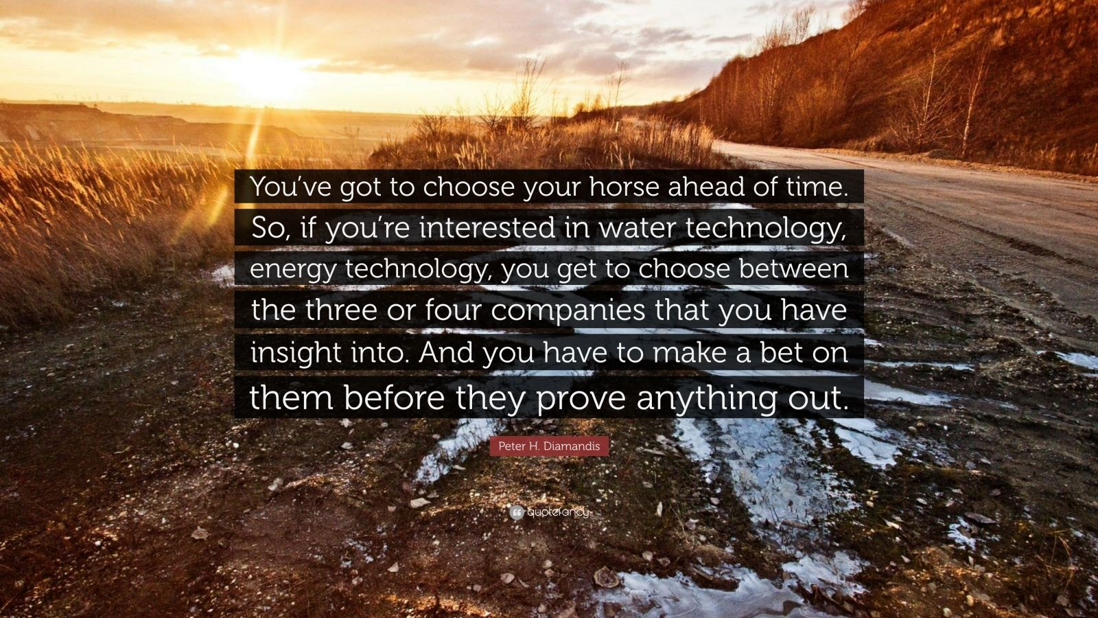 "Peter H. Diamandis Quote: ""You've got to choose your horse ahead of time. So, if you're interested in water technology, energy technology, you get to choose between the three or four companies that you have insight into. And you have to make a bet on them before they prove anything out."""