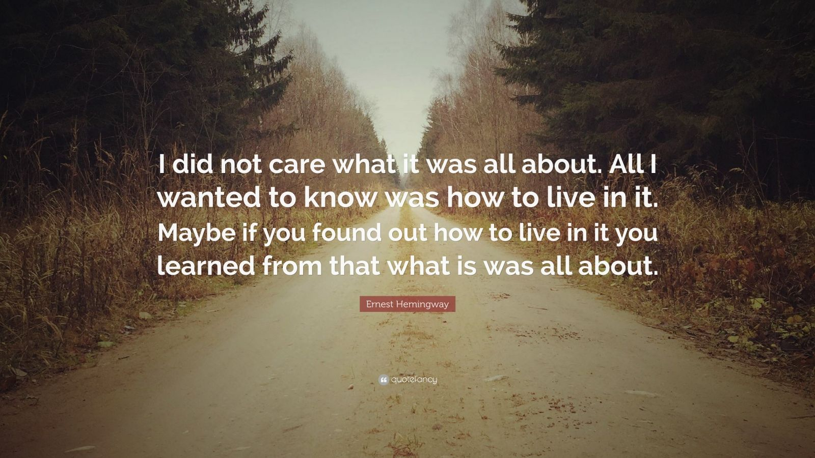"""Ernest Hemingway Quote: """"I did not care what it was all about. All I wanted to know was how to live in it. Maybe if you found out how to live in it you learned from that what is was all about."""""""