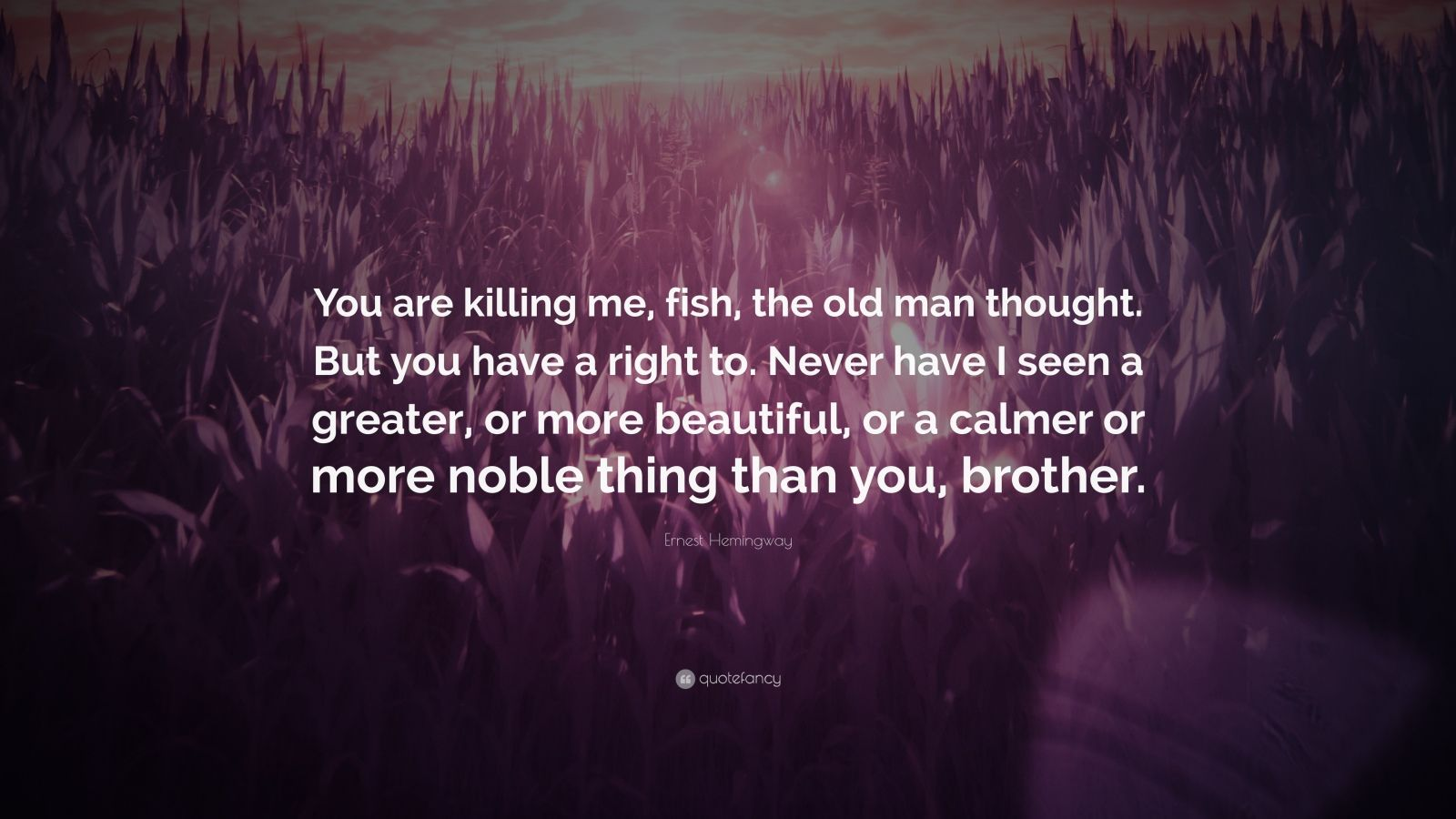 """Ernest Hemingway Quote: """"You are killing me, fish, the old man thought. But you have a right to. Never have I seen a greater, or more beautiful, or a calmer or more noble thing than you, brother."""""""