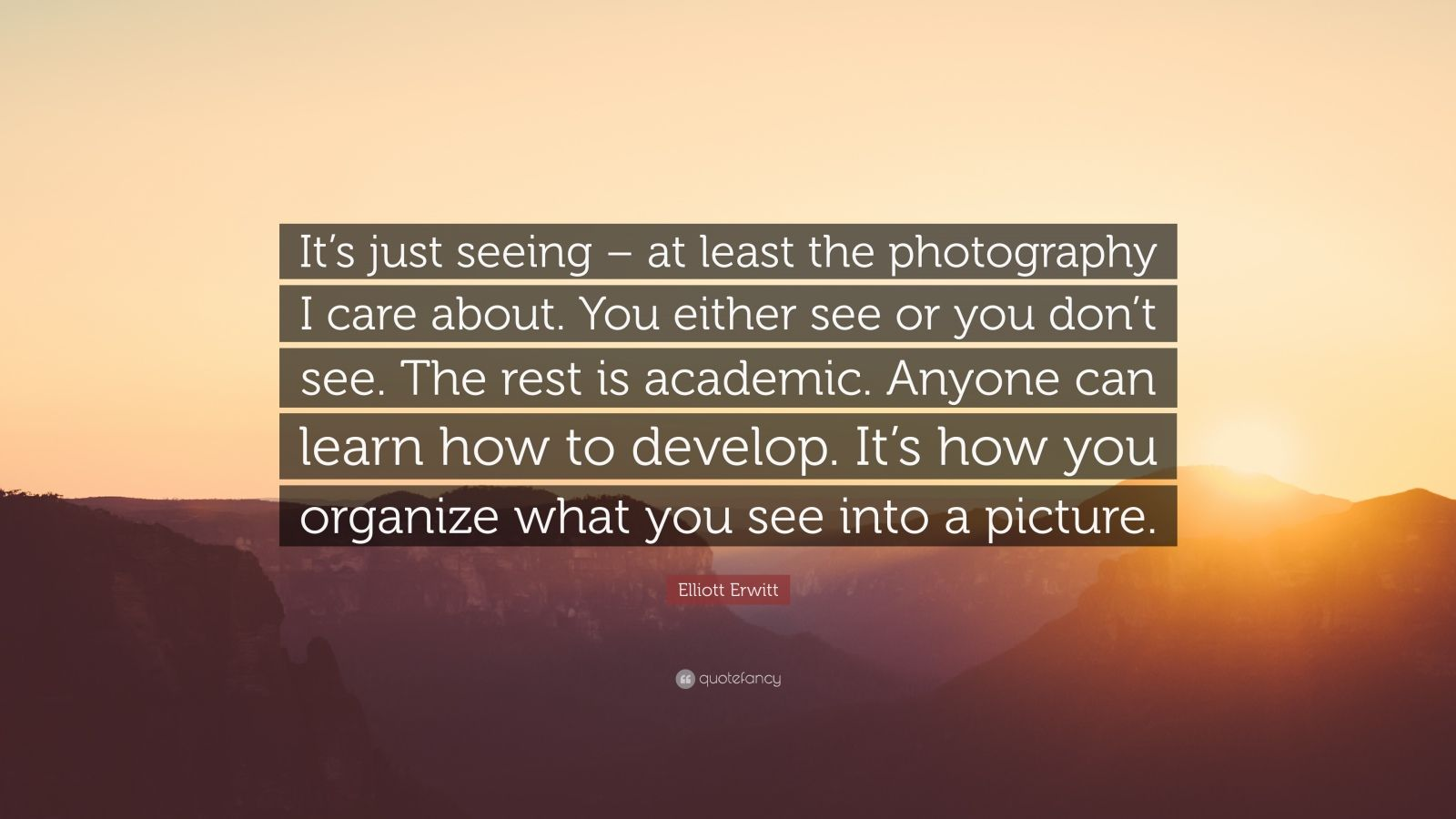 """Elliott Erwitt Quote: """"It's just seeing – at least the photography I care about. You either see or you don't see. The rest is academic. Anyone can learn how to develop. It's how you organize what you see into a picture."""""""