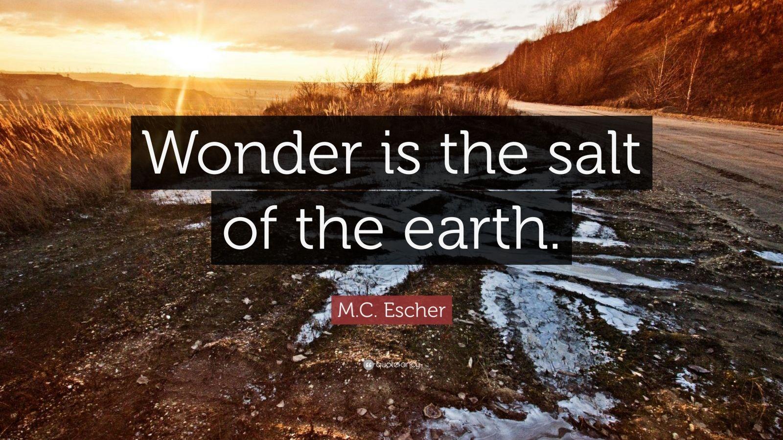 "M.C. Escher Quote: ""Wonder is the salt of the earth."""