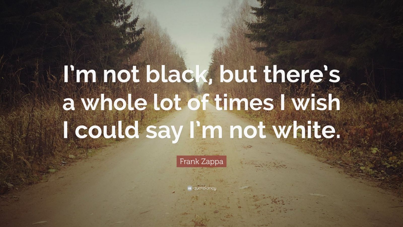 "Frank Zappa Quote: ""I'm not black, but there's a whole lot of times I wish I could say I'm not white."""