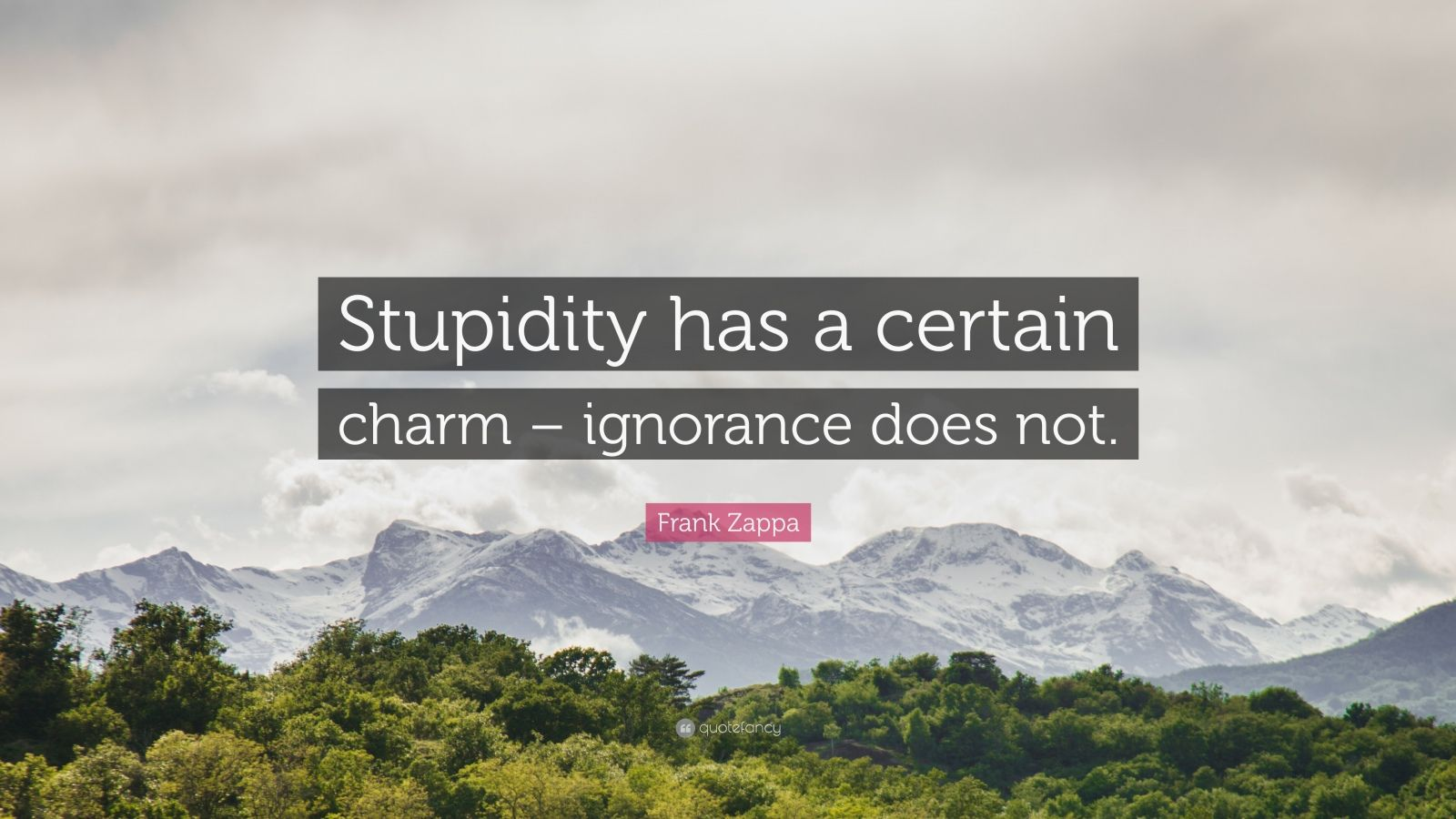 "Frank Zappa Quote: ""Stupidity has a certain charm – ignorance does not."""
