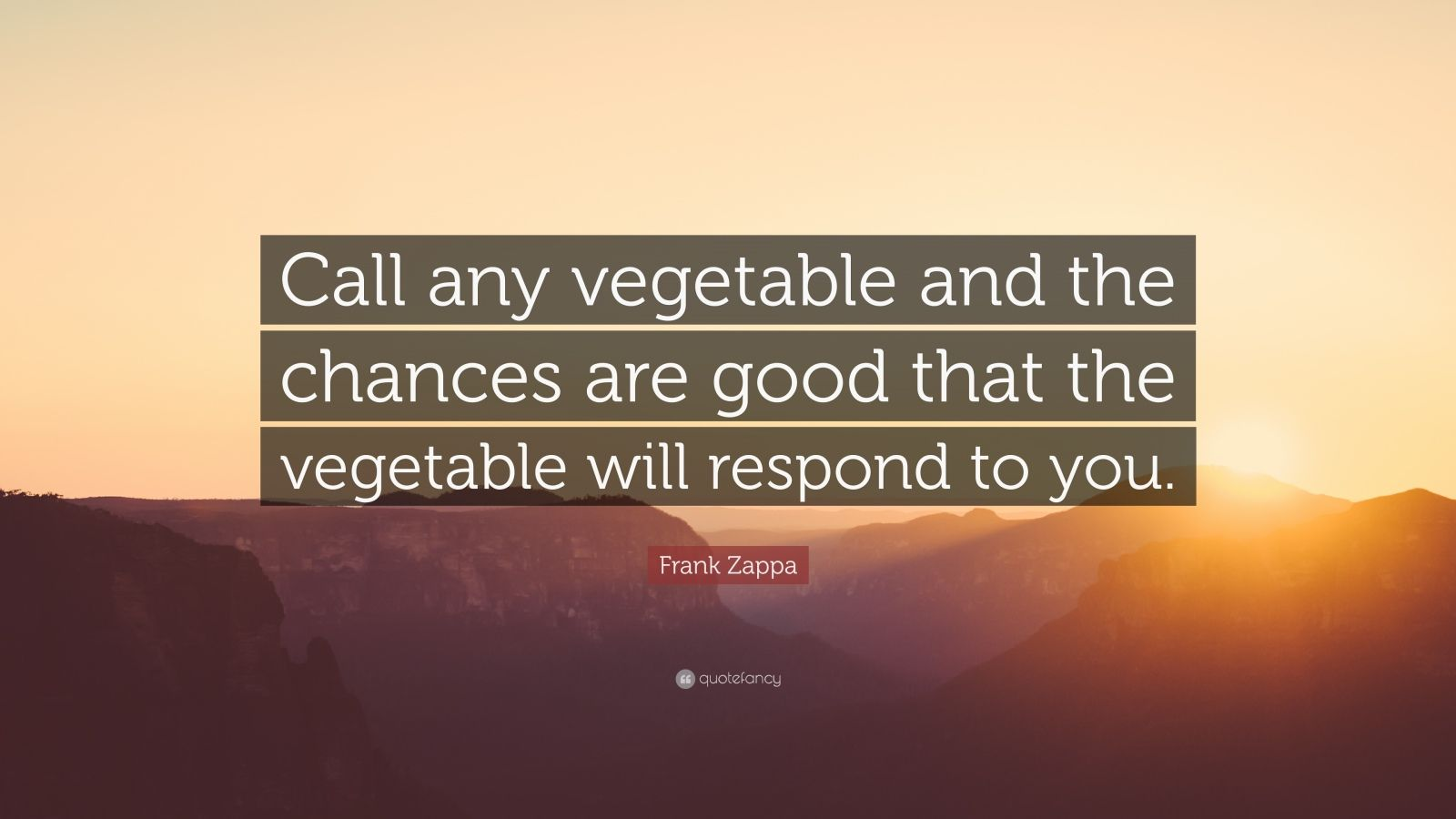 """Frank Zappa Quote: """"Call any vegetable and the chances are good that the vegetable will respond to you."""""""