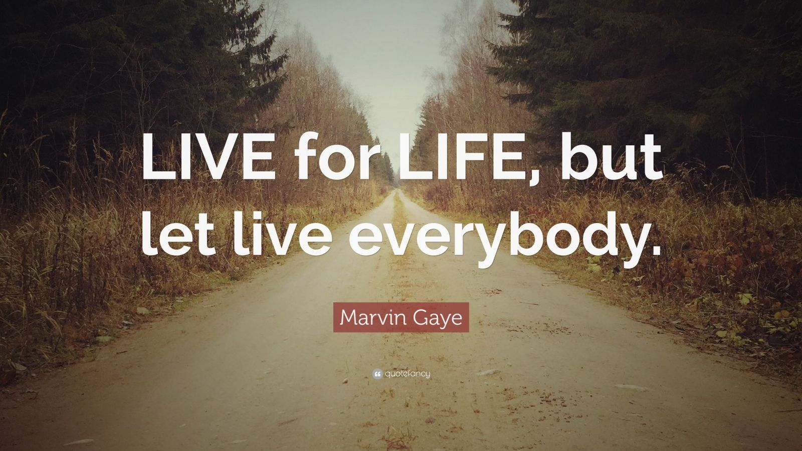 "Marvin Gaye Quote: ""LIVE for LIFE, but let live everybody."""