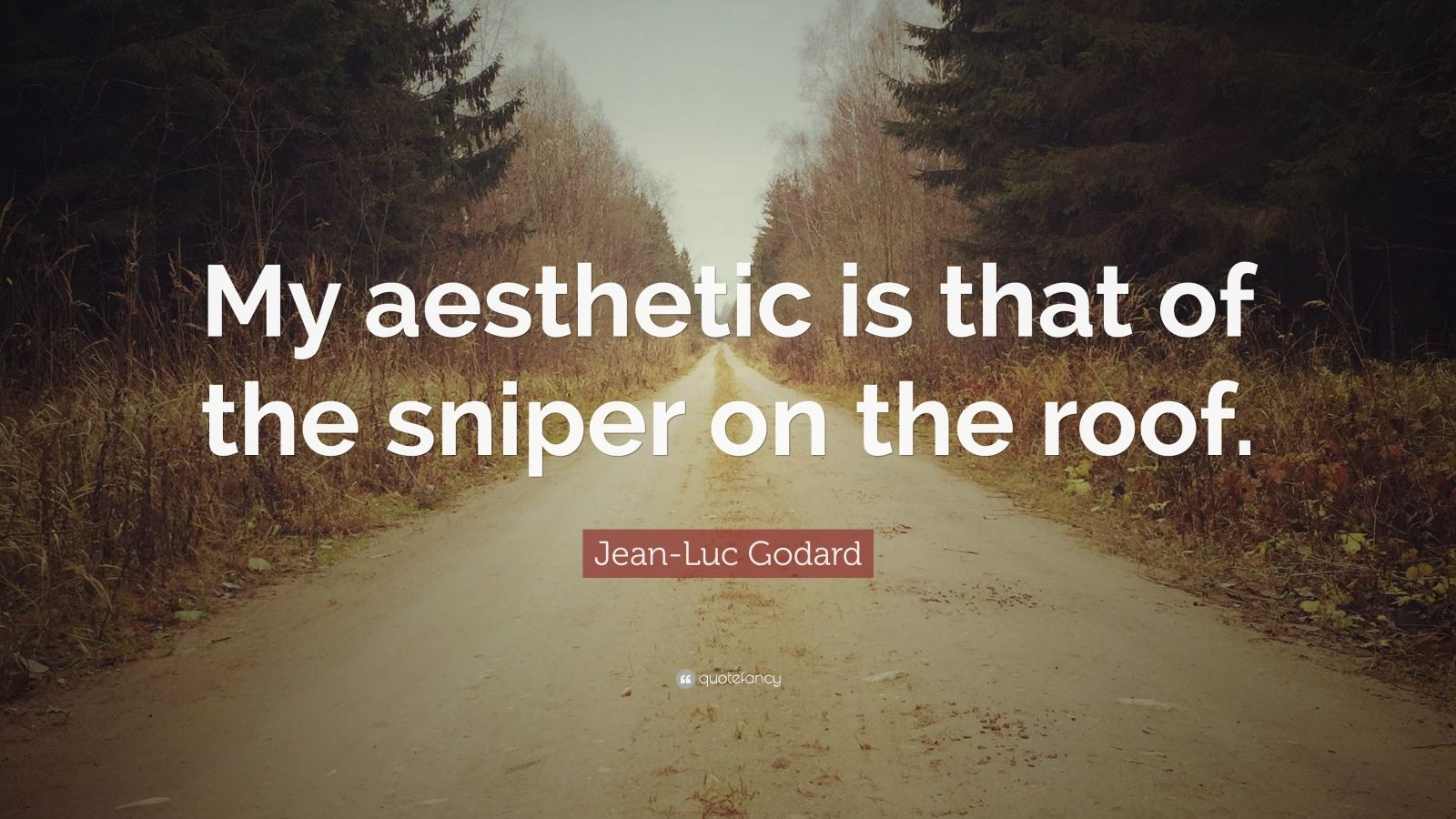 """Jean-Luc Godard Quote: """"My Aesthetic Is That Of The Sniper"""
