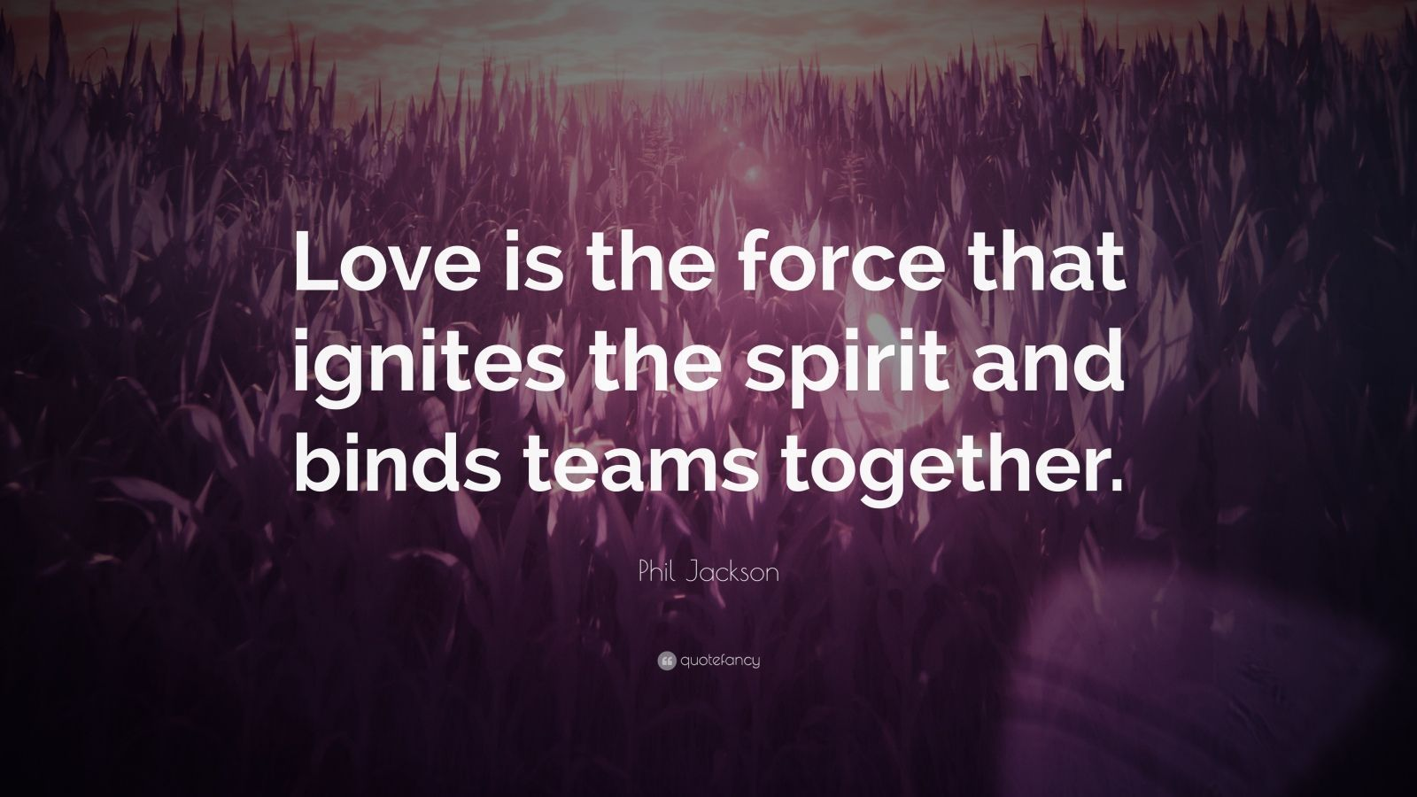 """Phil Jackson Quote: """"Love is the force that ignites the spirit and binds teams together."""""""