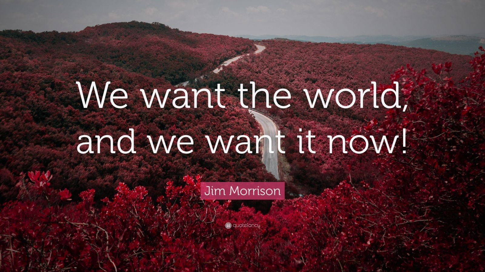 "Jim Morrison Quote: ""We want the world, and we want it now!"""