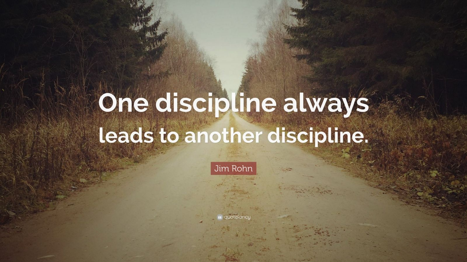 """Jim Rohn Quote: """"One discipline always leads to another discipline."""""""