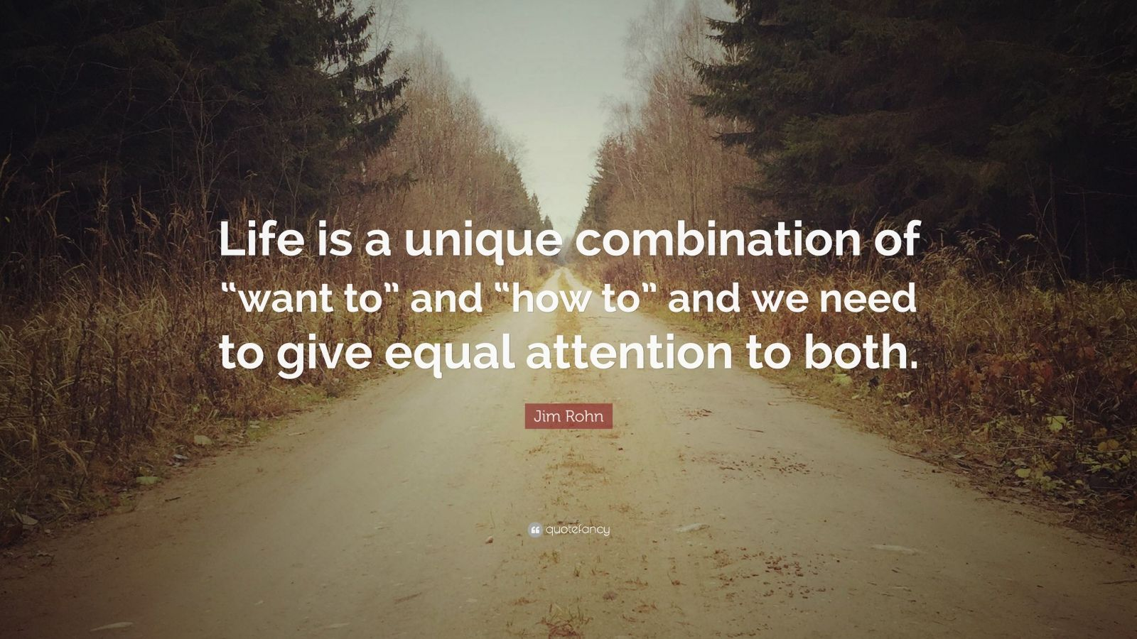 """Jim Rohn Quote: """"Life is a unique combination of """"want to"""" and """"how to"""" and we need to give equal attention to both."""""""
