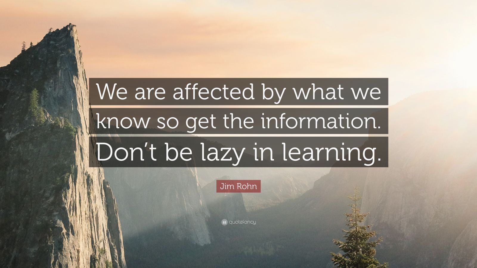 """Jim Rohn Quote: """"We are affected by what we know so get the information. Don't be lazy in learning."""""""