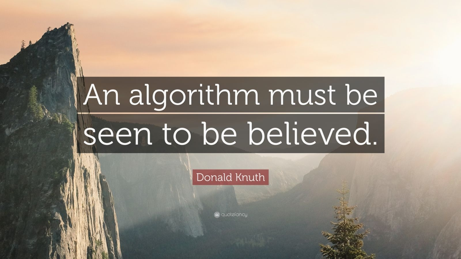"Donald Knuth Quote: ""An algorithm must be seen to be believed."""