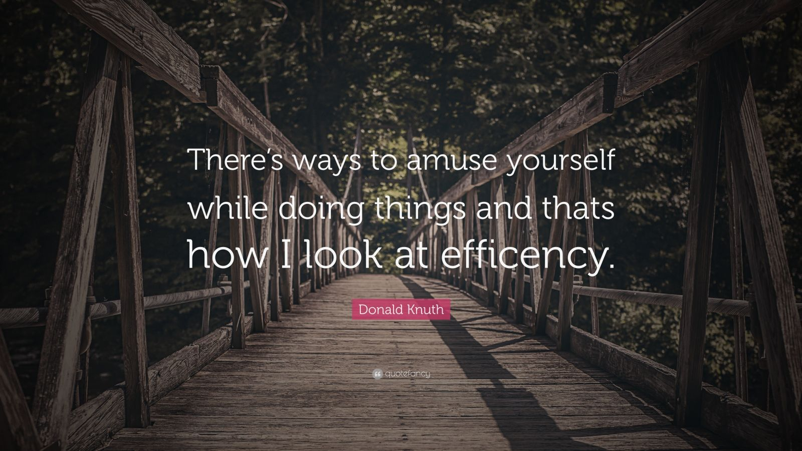 """Donald Knuth Quote: """"There's ways to amuse yourself while doing things and thats how I look at efficency."""""""