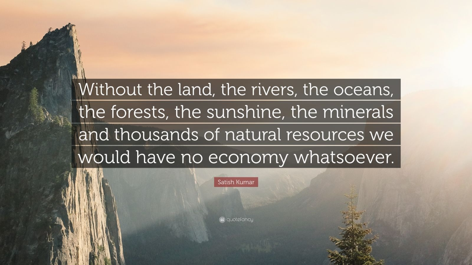"""Satish Kumar Quote: """"Without the land, the rivers, the oceans, the forests, the sunshine, the minerals and thousands of natural resources we would have no economy whatsoever."""""""