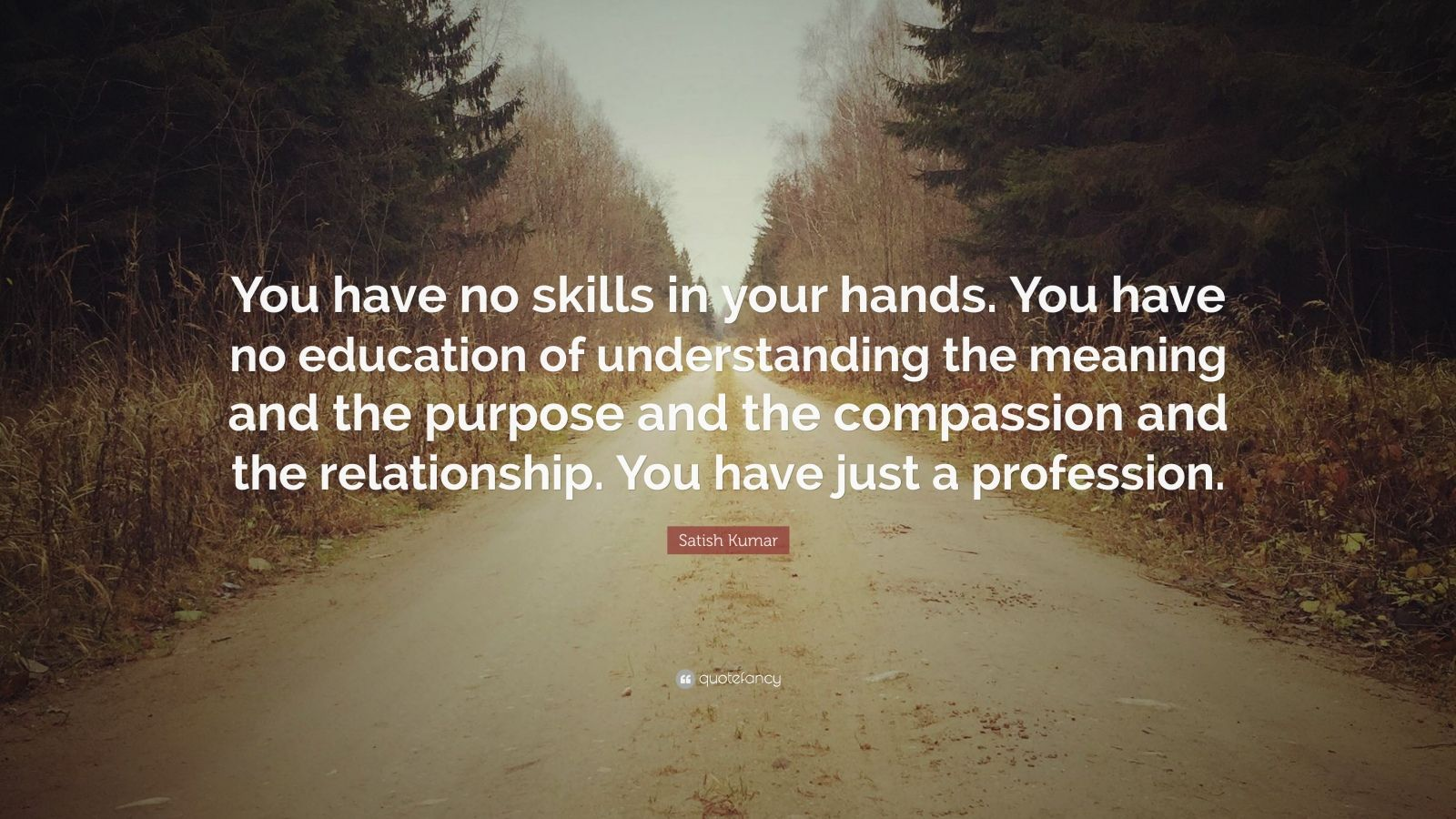 "Satish Kumar Quote: ""You have no skills in your hands. You have no education of understanding the meaning and the purpose and the compassion and the relationship. You have just a profession."""