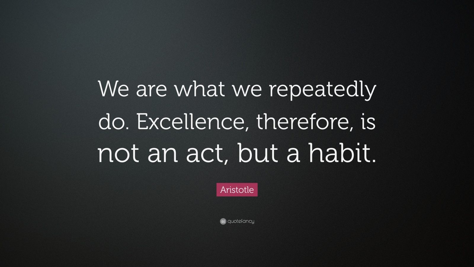 "Aristotle Quote: ""We Are What We Repeatedly Do. Excellence"
