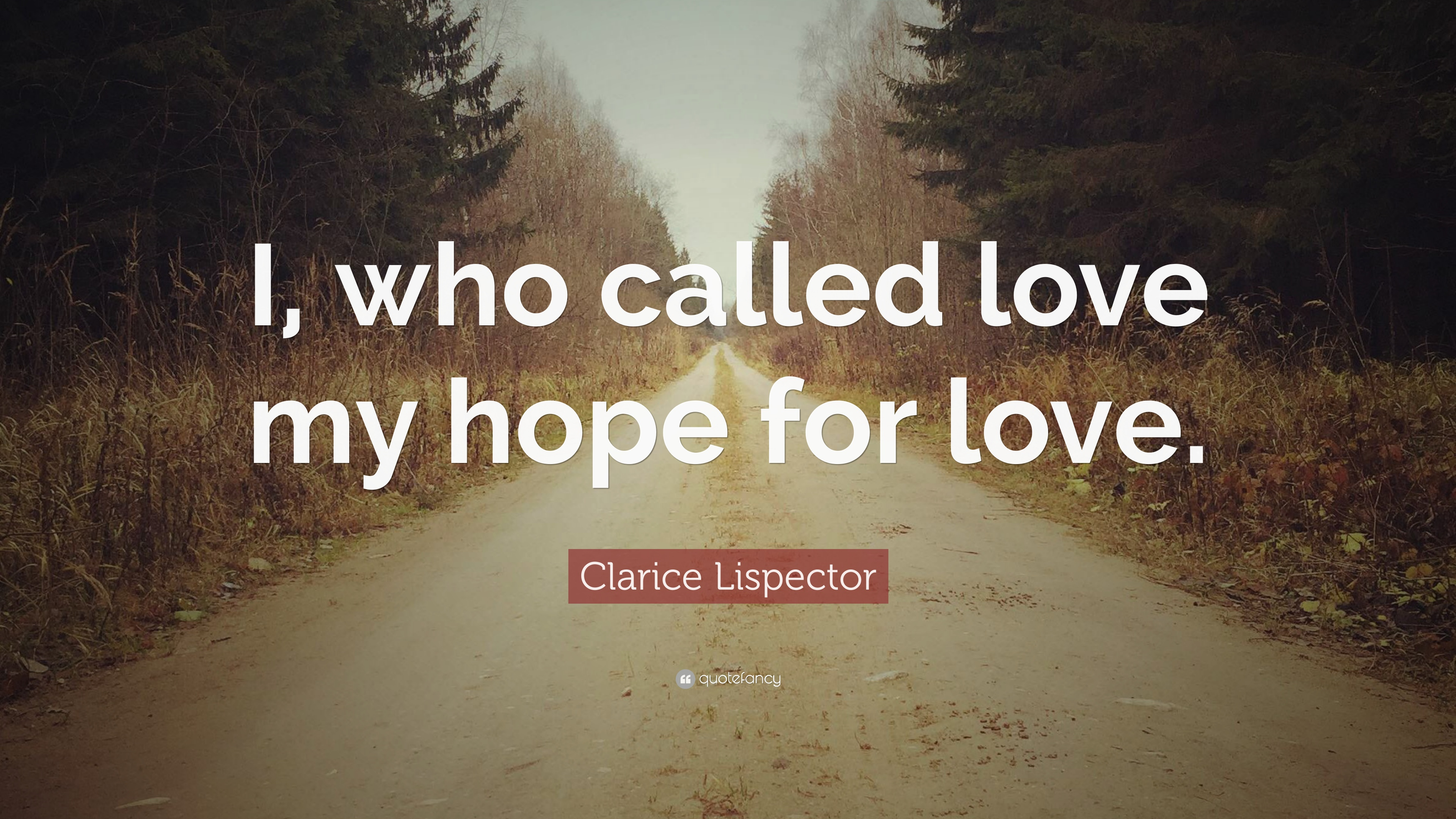 clarice lispector love essay Among them: clarice lispector with the passion according to g h, her book for   rachel kushner delved into the work of lispector in her essay for  --alfred  hayes, in love ditch your failing relationship and spend date.