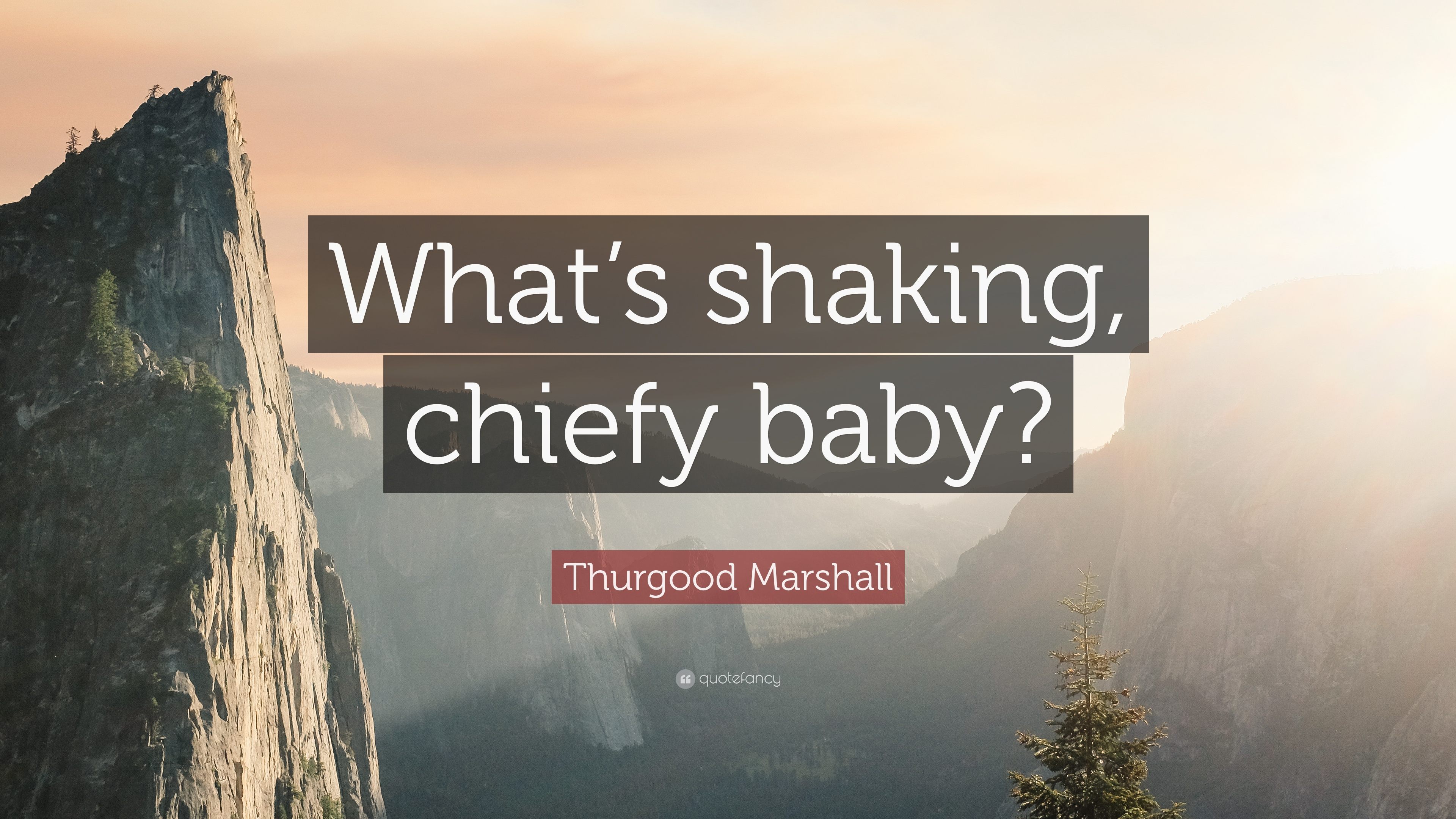 "Thurgood Marshall Quotes Thurgood Marshall Quote ""What's Shaking Chiefy Baby"" 7"