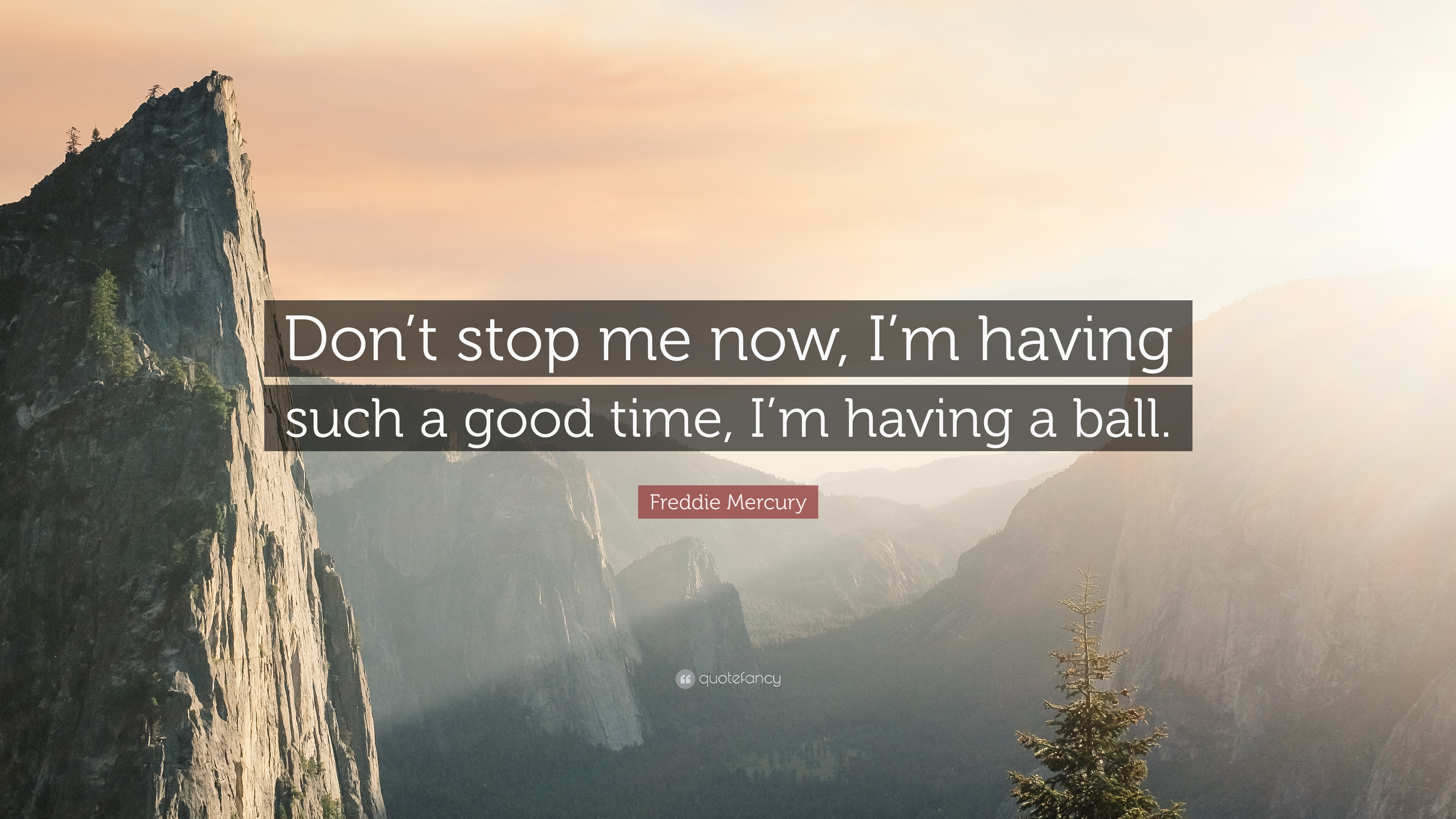Freddie Mercury Quote Dont Stop Me Now Im Having Such A Good