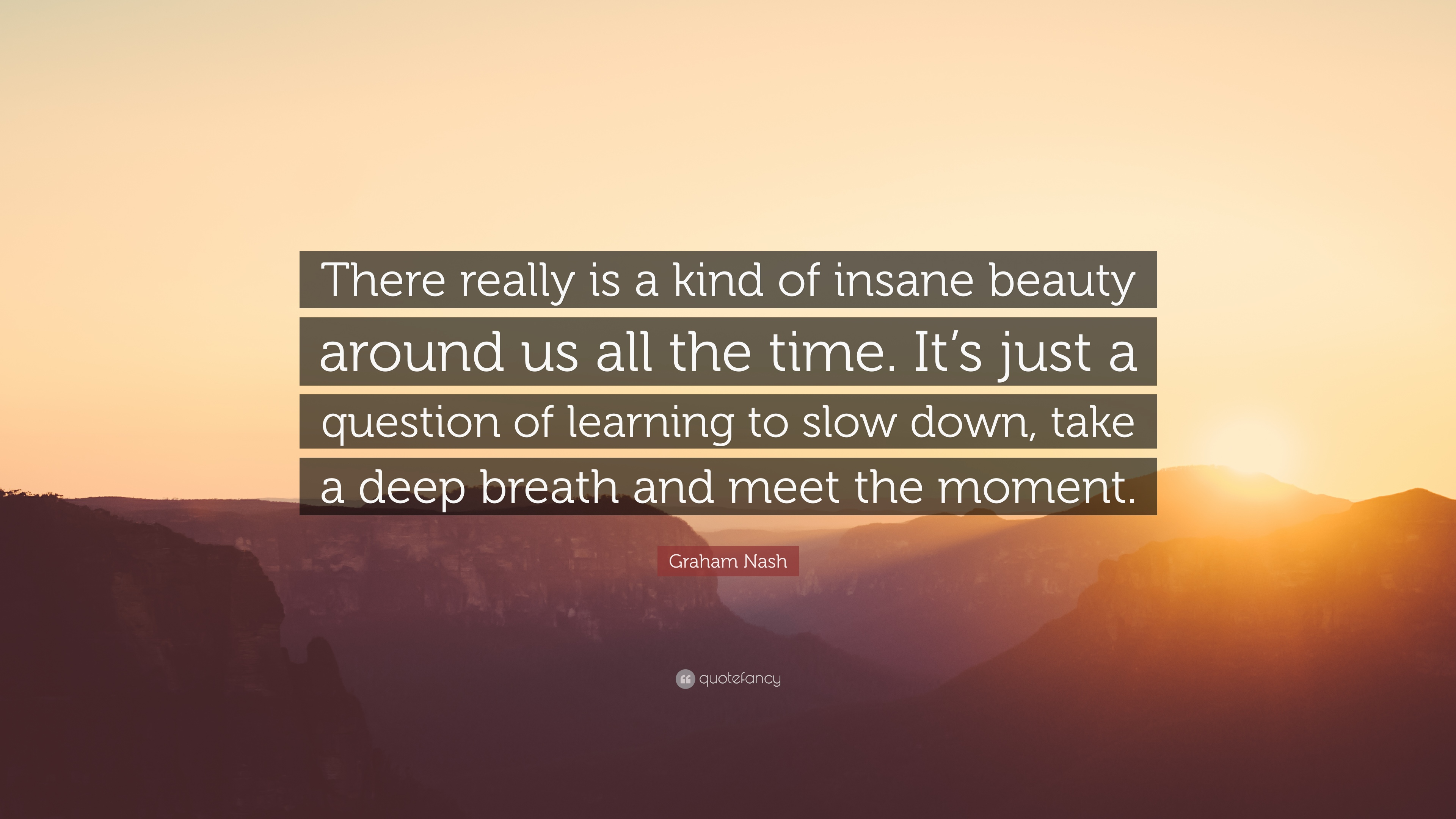 Graham Nash Quote There Really Is A Kind Of Insane Beauty Around