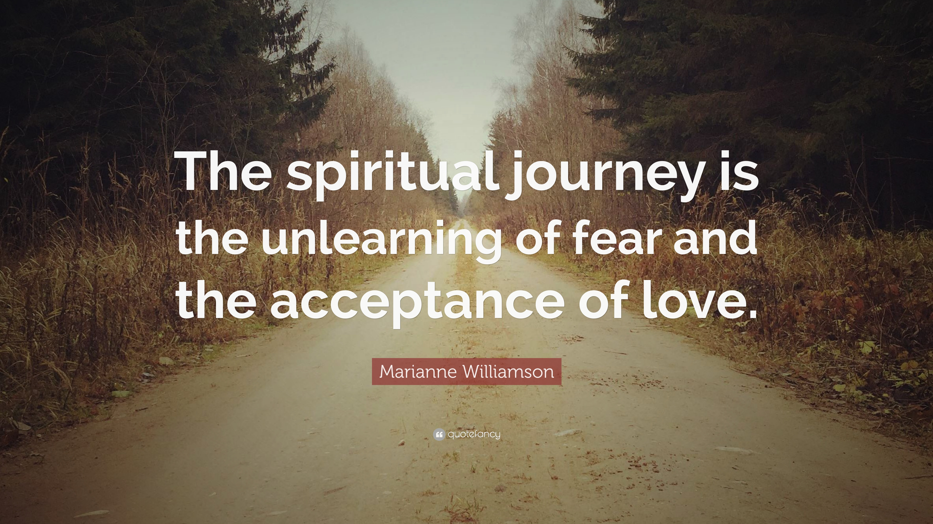 """Marianne Williamson Quote: """"The spiritual journey is the ..."""