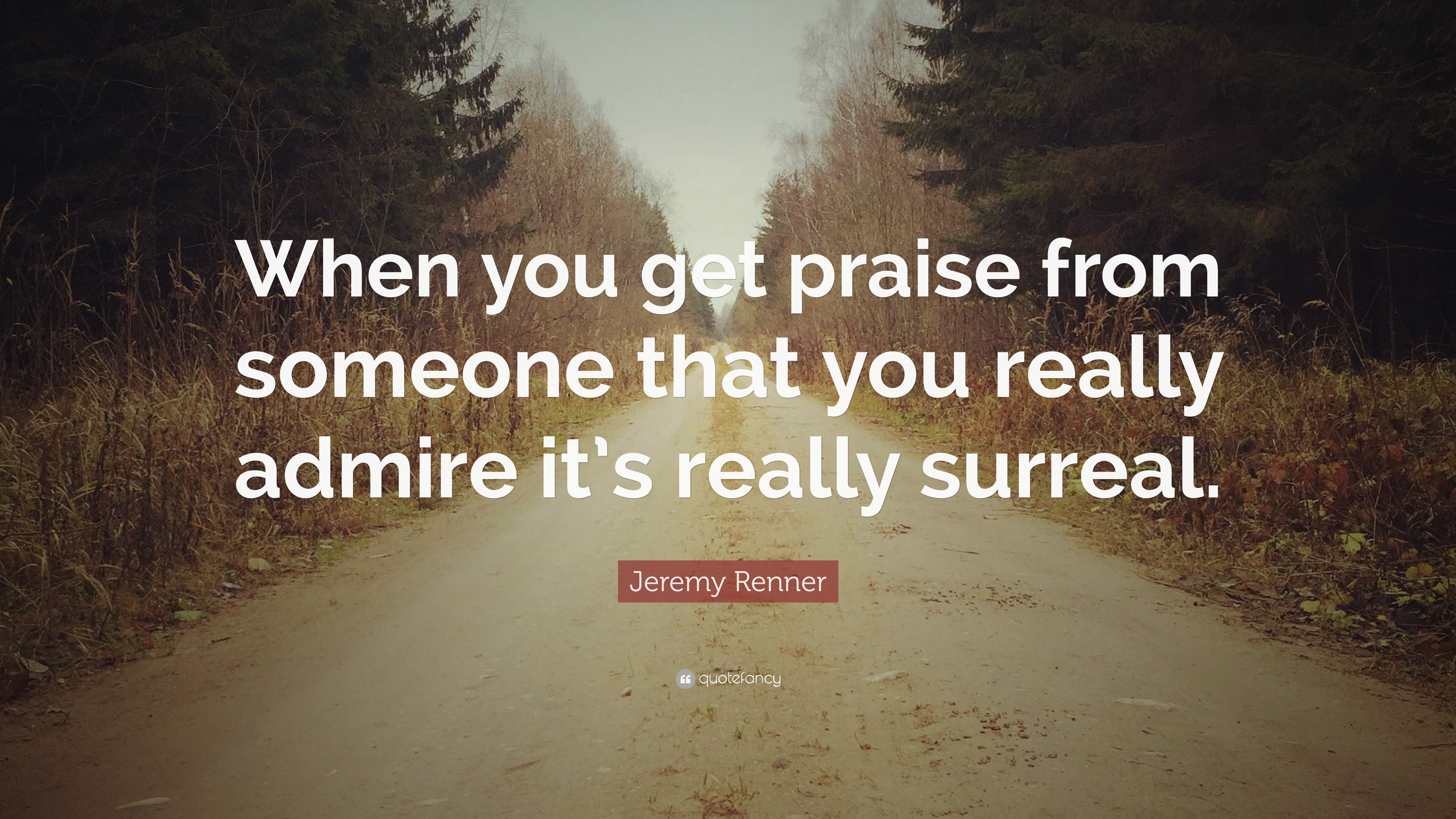 Jeremy Renner Quote When You Get Praise From Someone That You