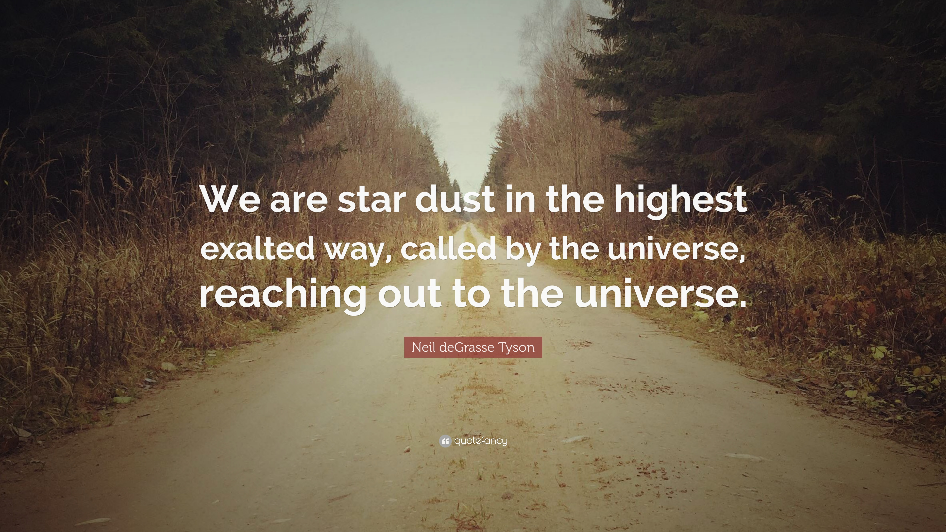 Neil Degrasse Tyson Quote We Are Star Dust In The Highest Exalted