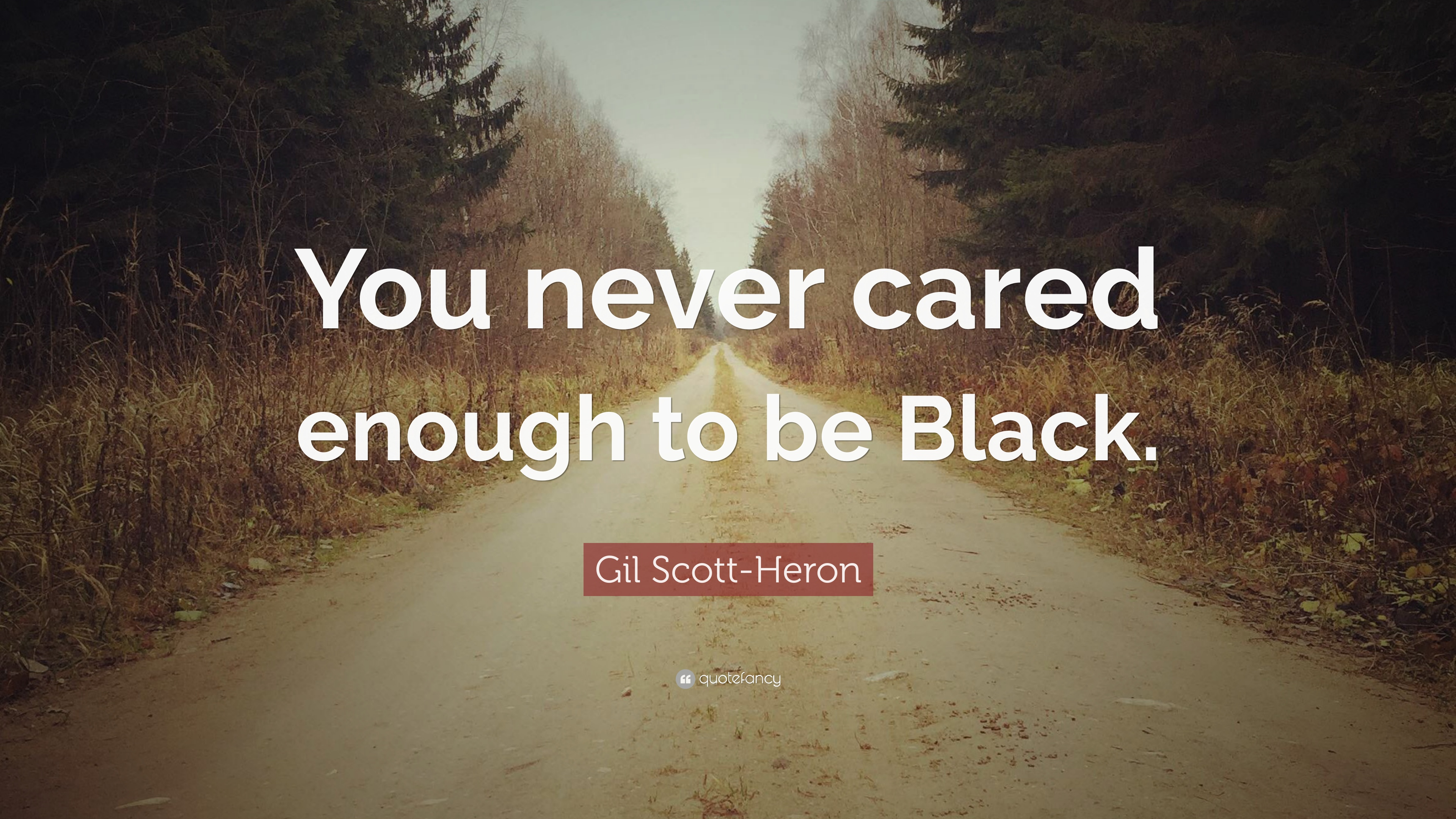 Gil Scott Heron Quote You Never Cared Enough To Be Black 7
