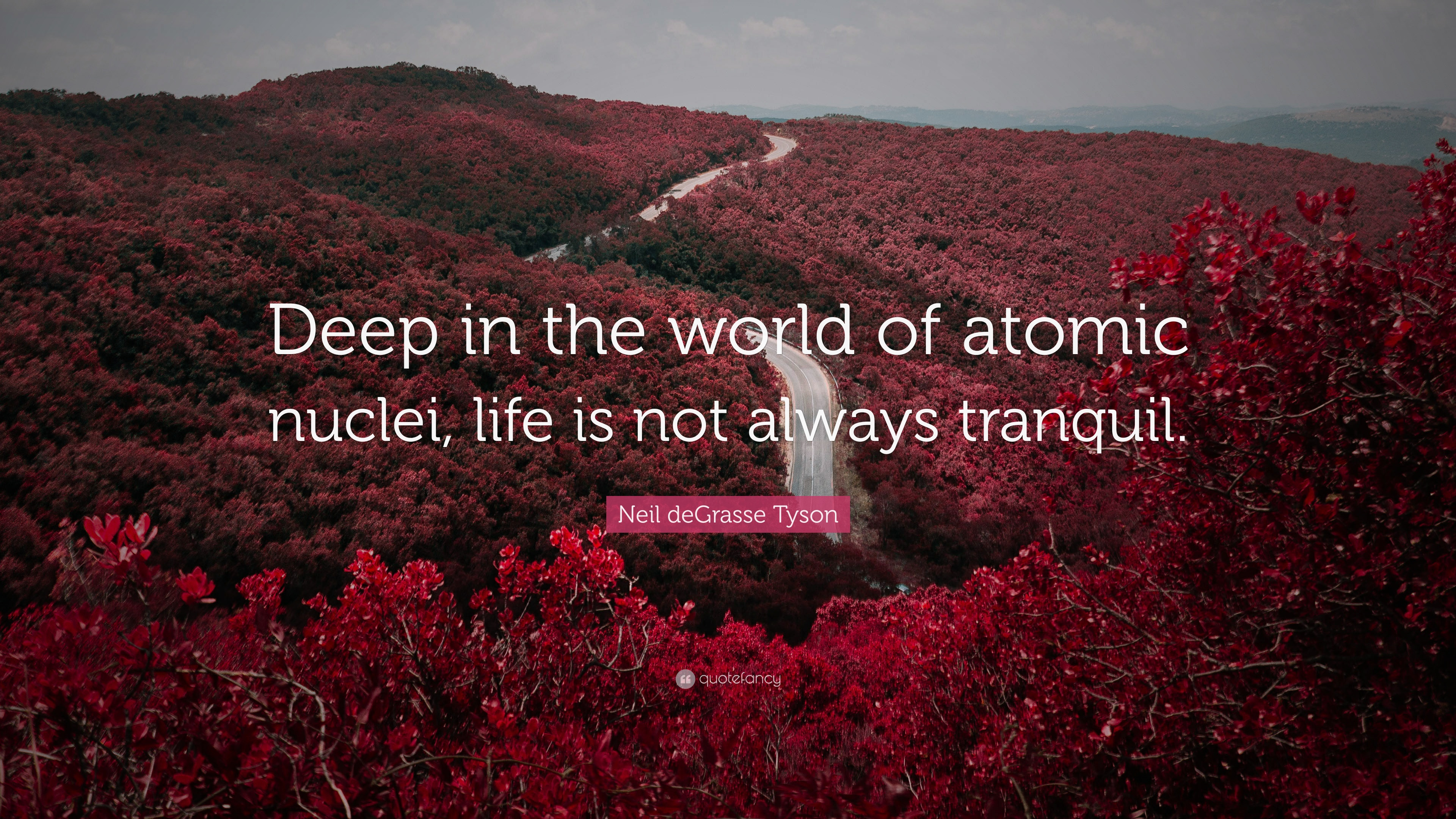 Neil DeGrasse Tyson Quote Deep In The World Of Atomic Nuclei Life Is
