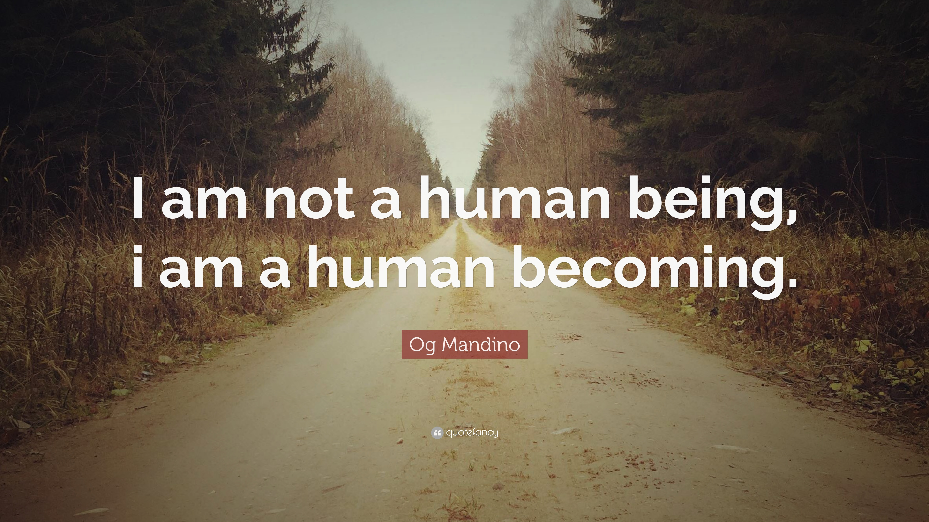 Og Mandino Quotes (100 Wallpapers)
