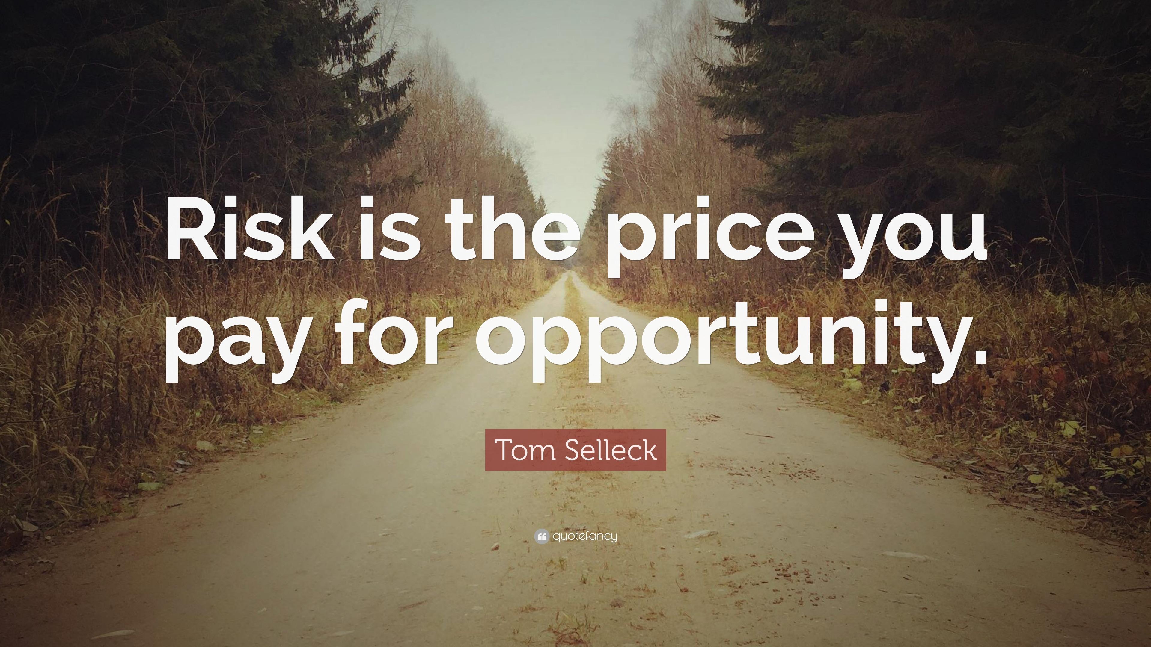 Αποτέλεσμα εικόνας για quotes risk