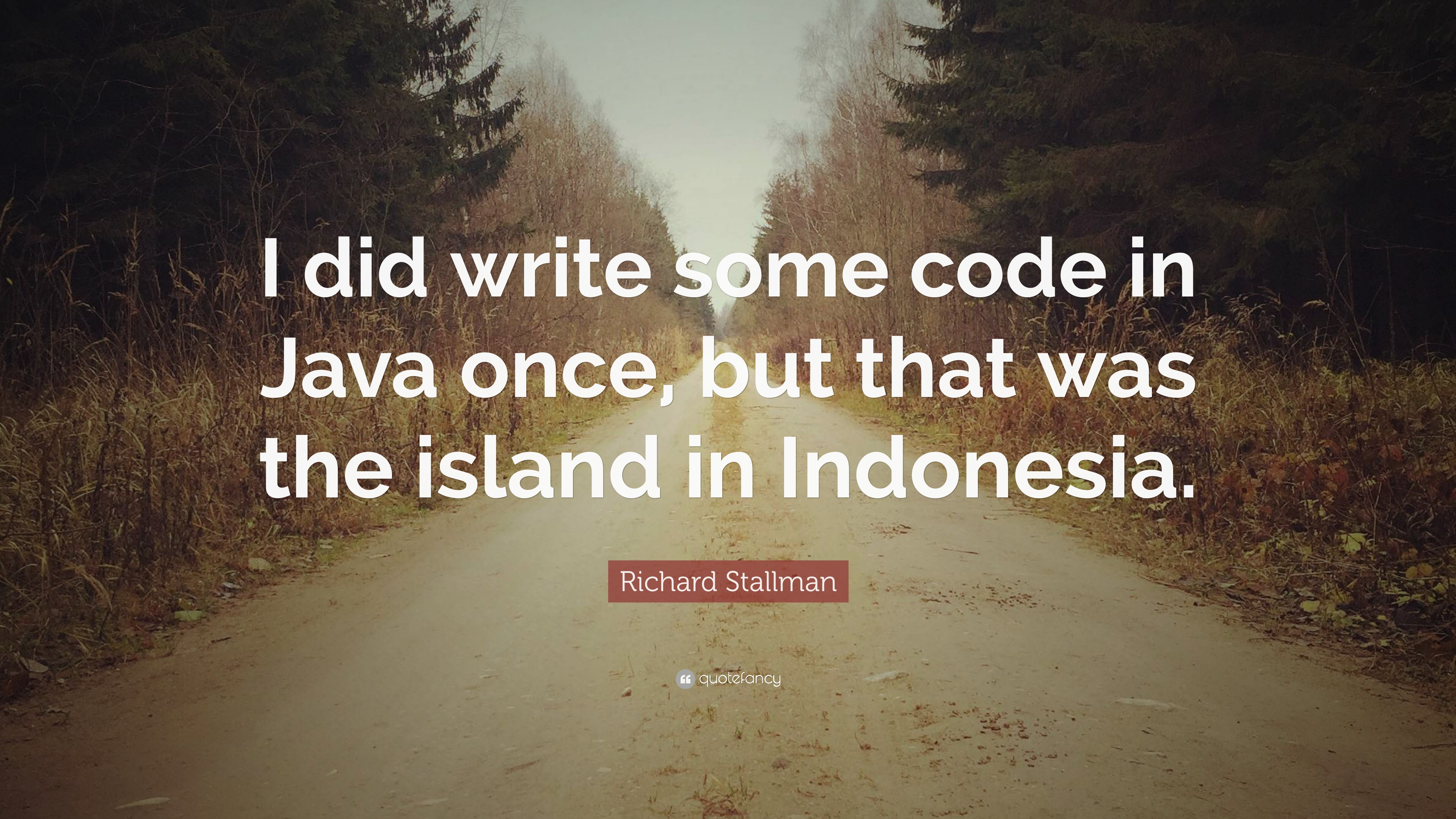 Richard stallman quote i did write some code in java once but that