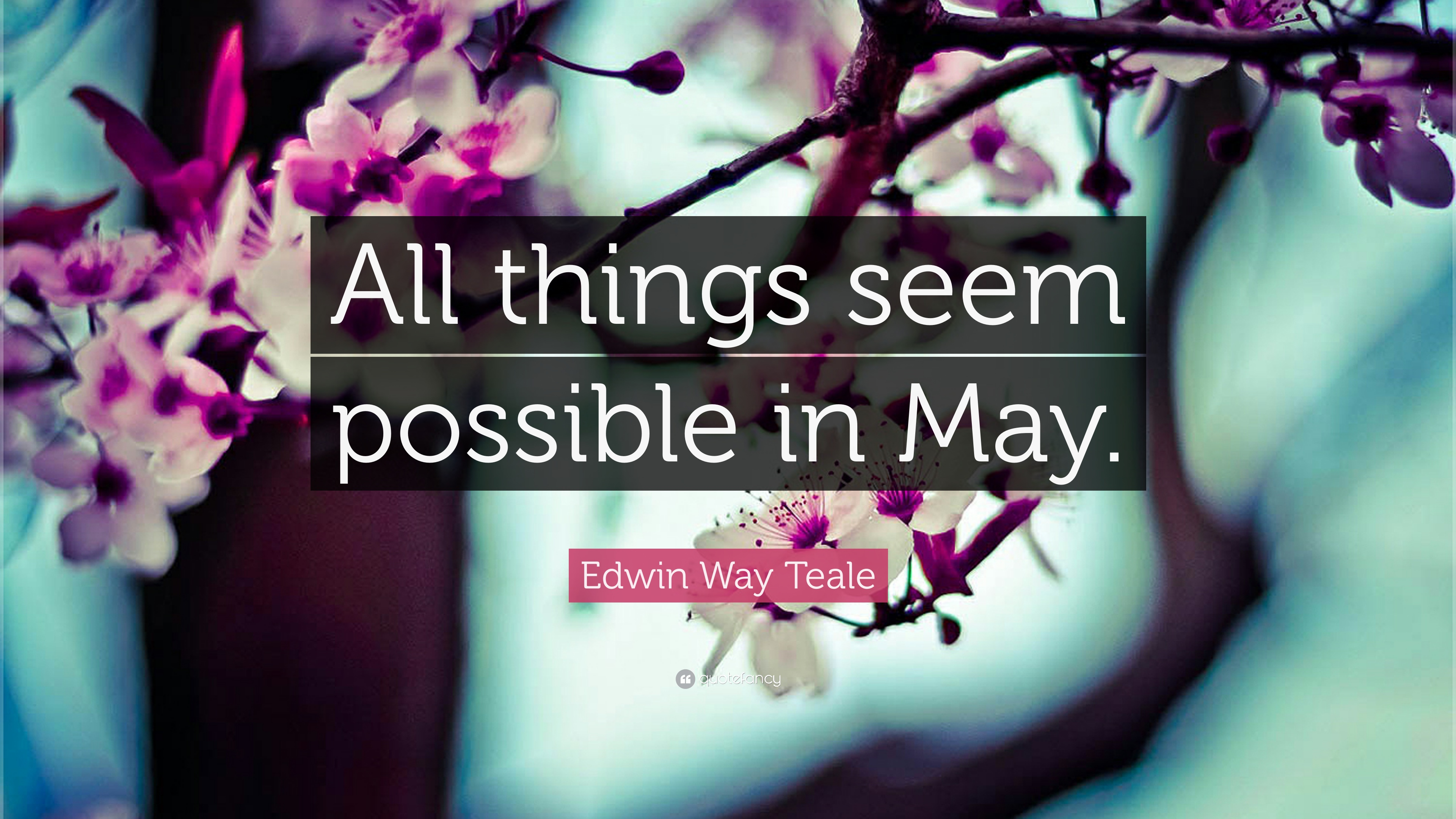 Edwin Way Teale Quote All Things Seem Possible In May