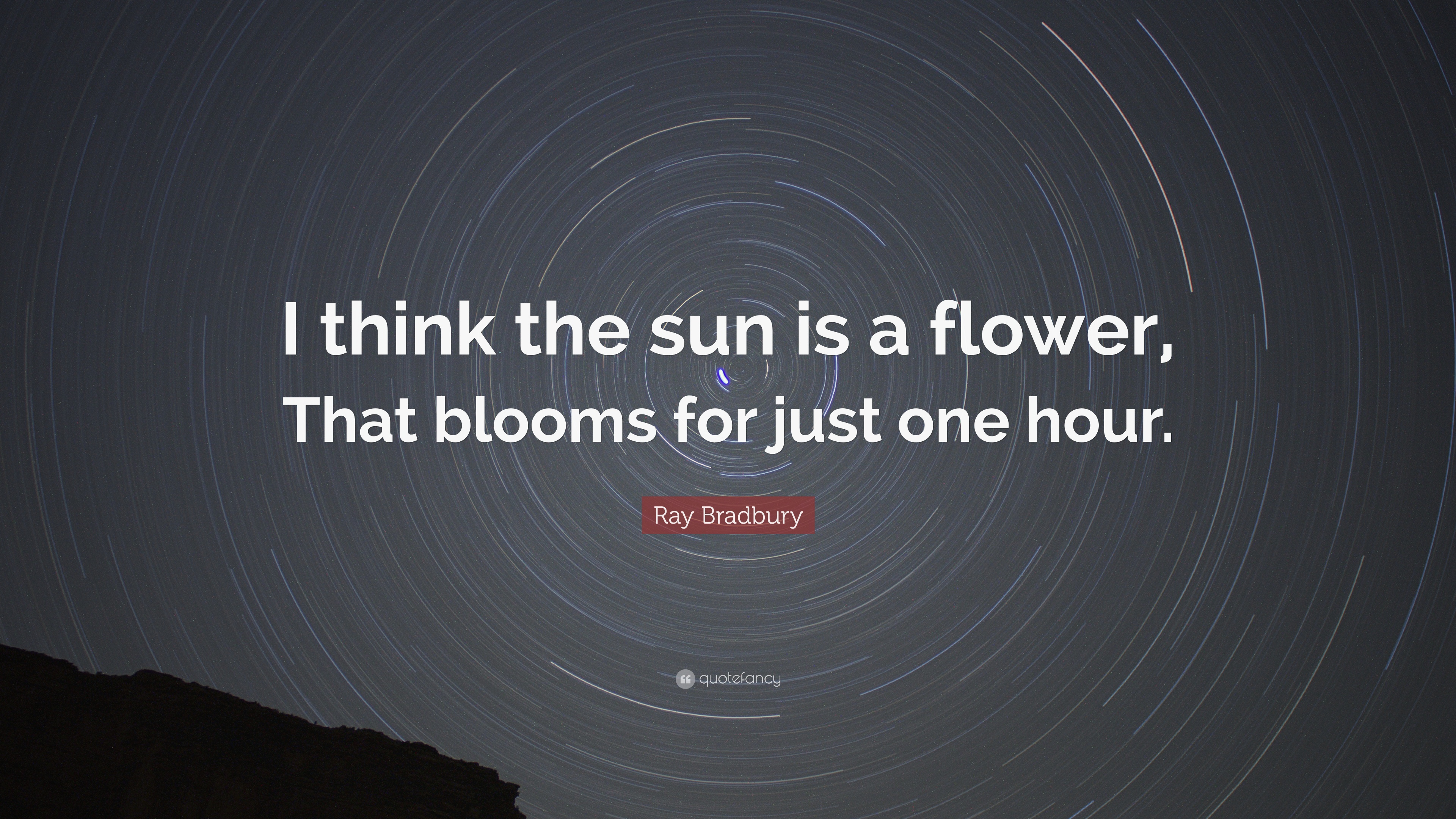 A Flower Just Blooms Quote Wajiflower