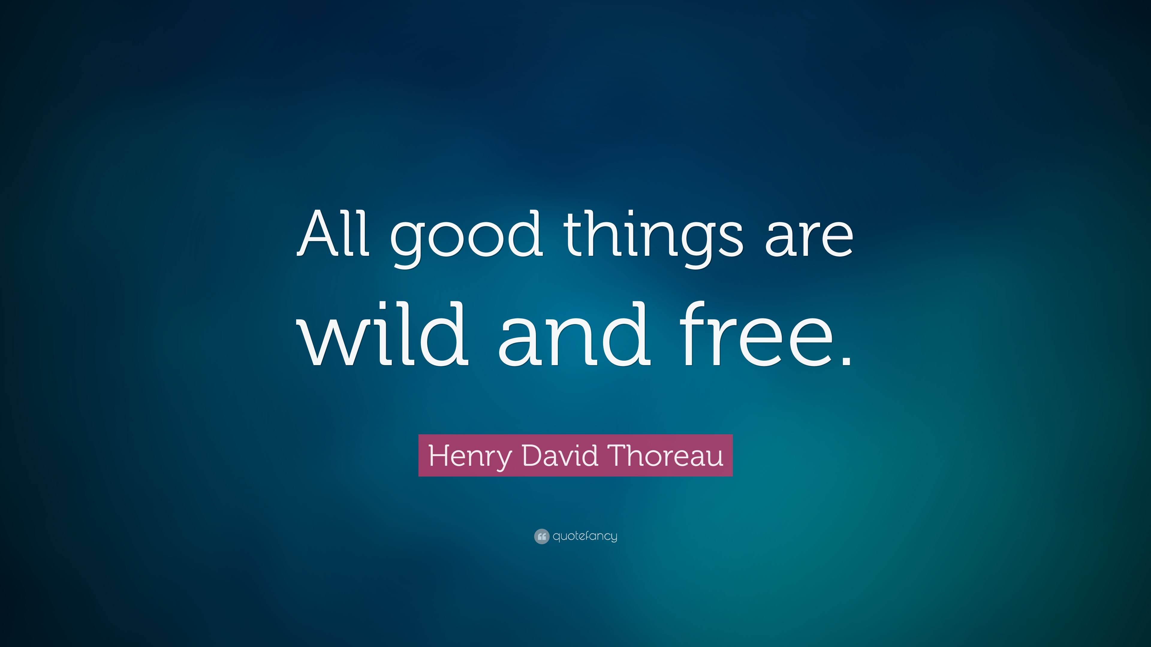 all good things are wild and All good things are wild and free free bundle a place to run wild + free wild explorers club an adventure program for kids explore wild + free groups find one near you get wild + free announcements and offers in your inbox.