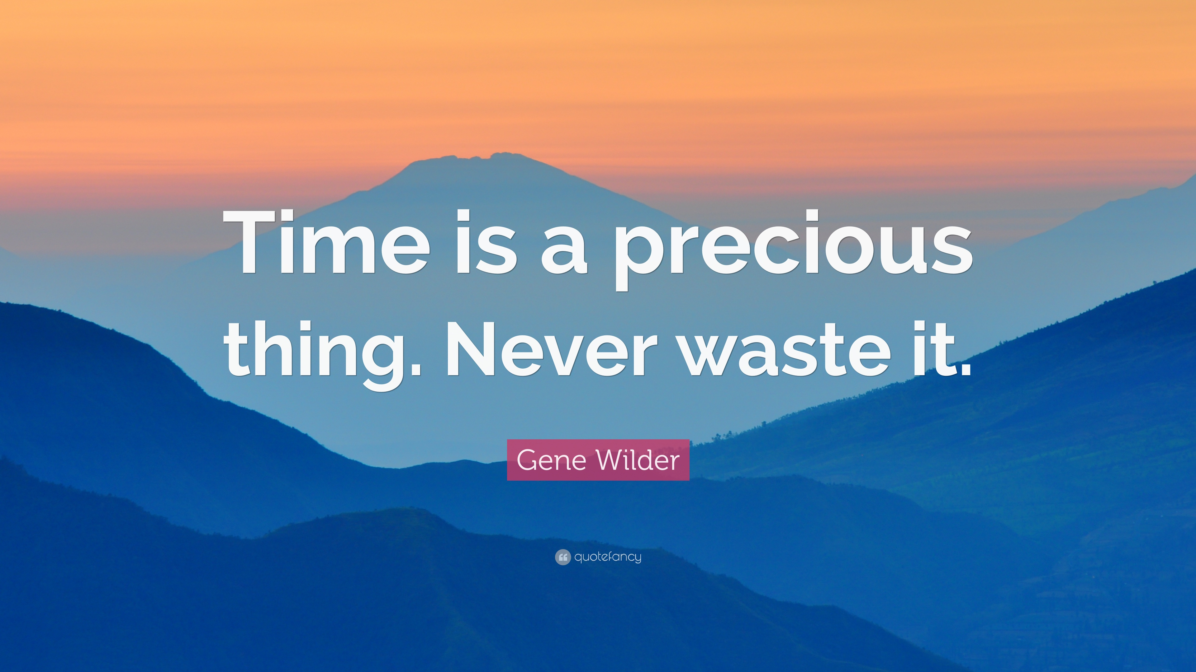 Gene Wilder Quote Time Is A Precious Thing Never Waste It 12