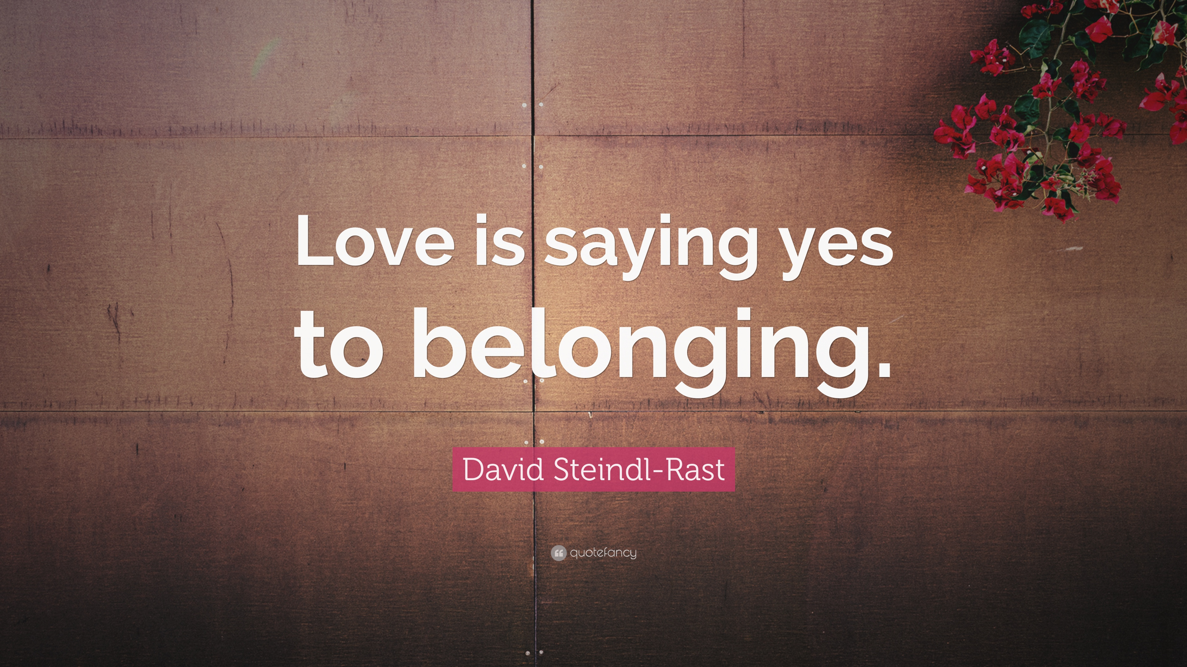 """David Steindl Rast Quote """"Love is saying yes to belonging """""""