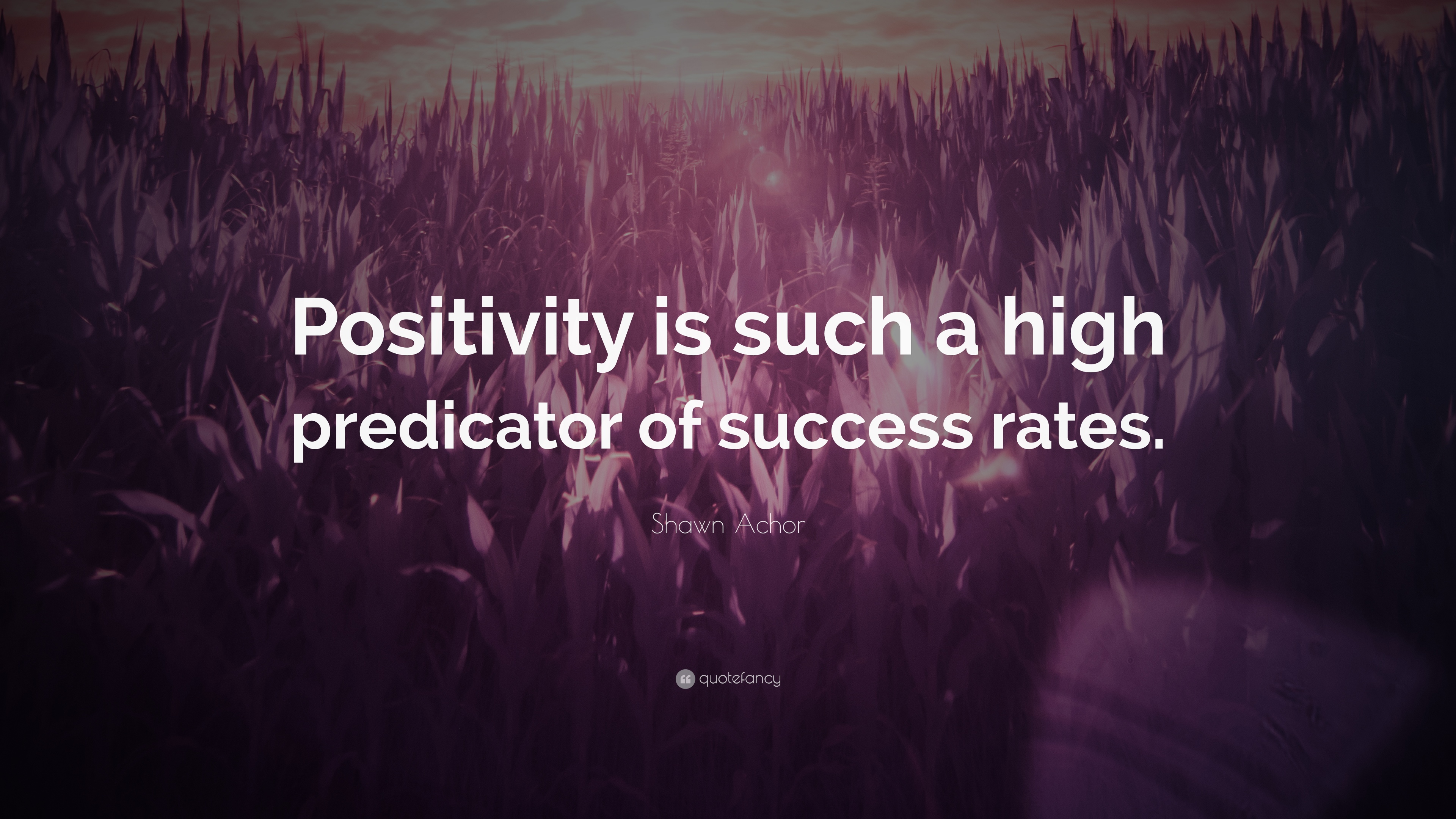 "Shawn Achor Quotes Adorable Shawn Achor Quote ""Positivity Is Such A High Predicator Of"