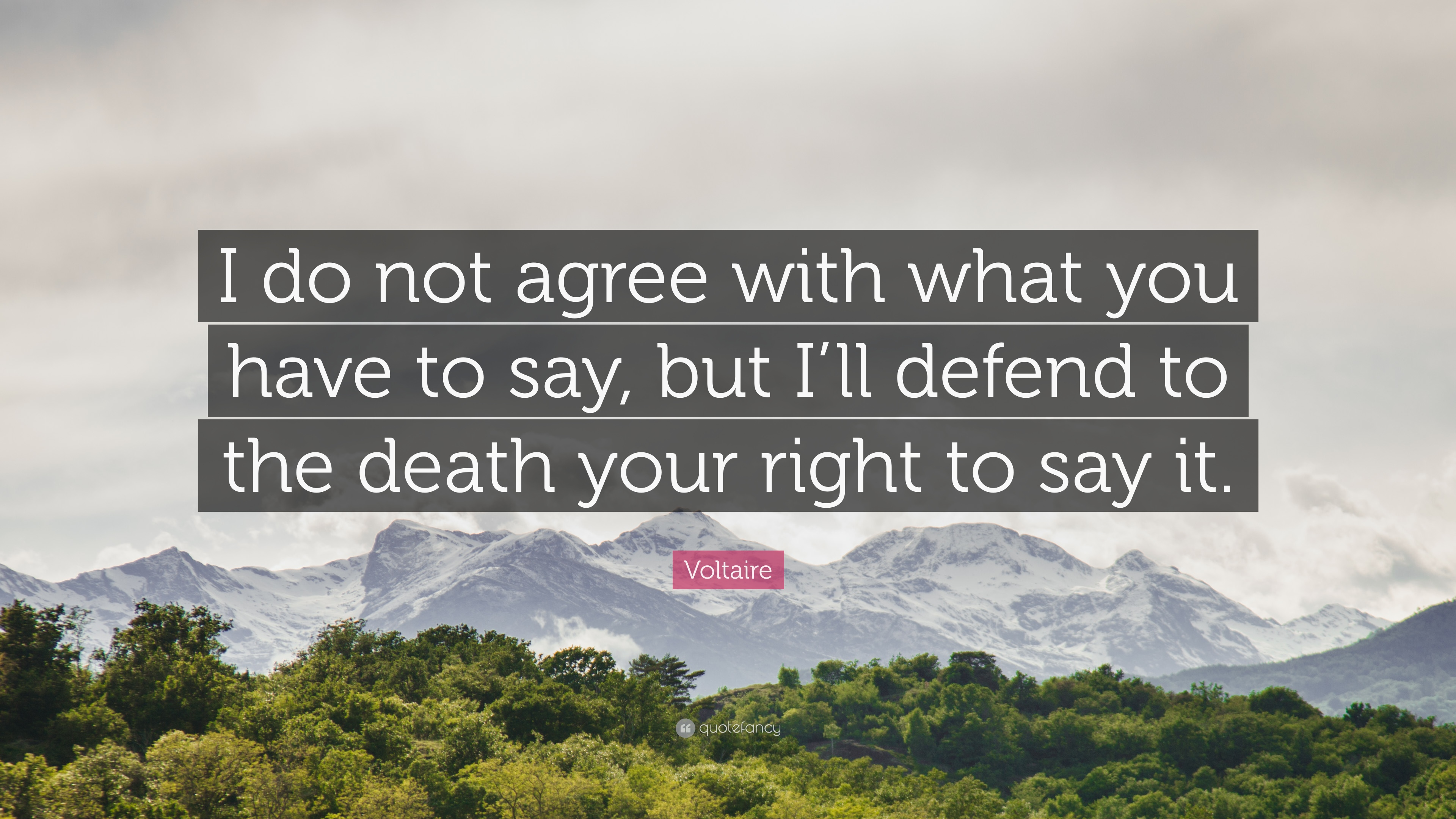 I may not agree with what you say quote