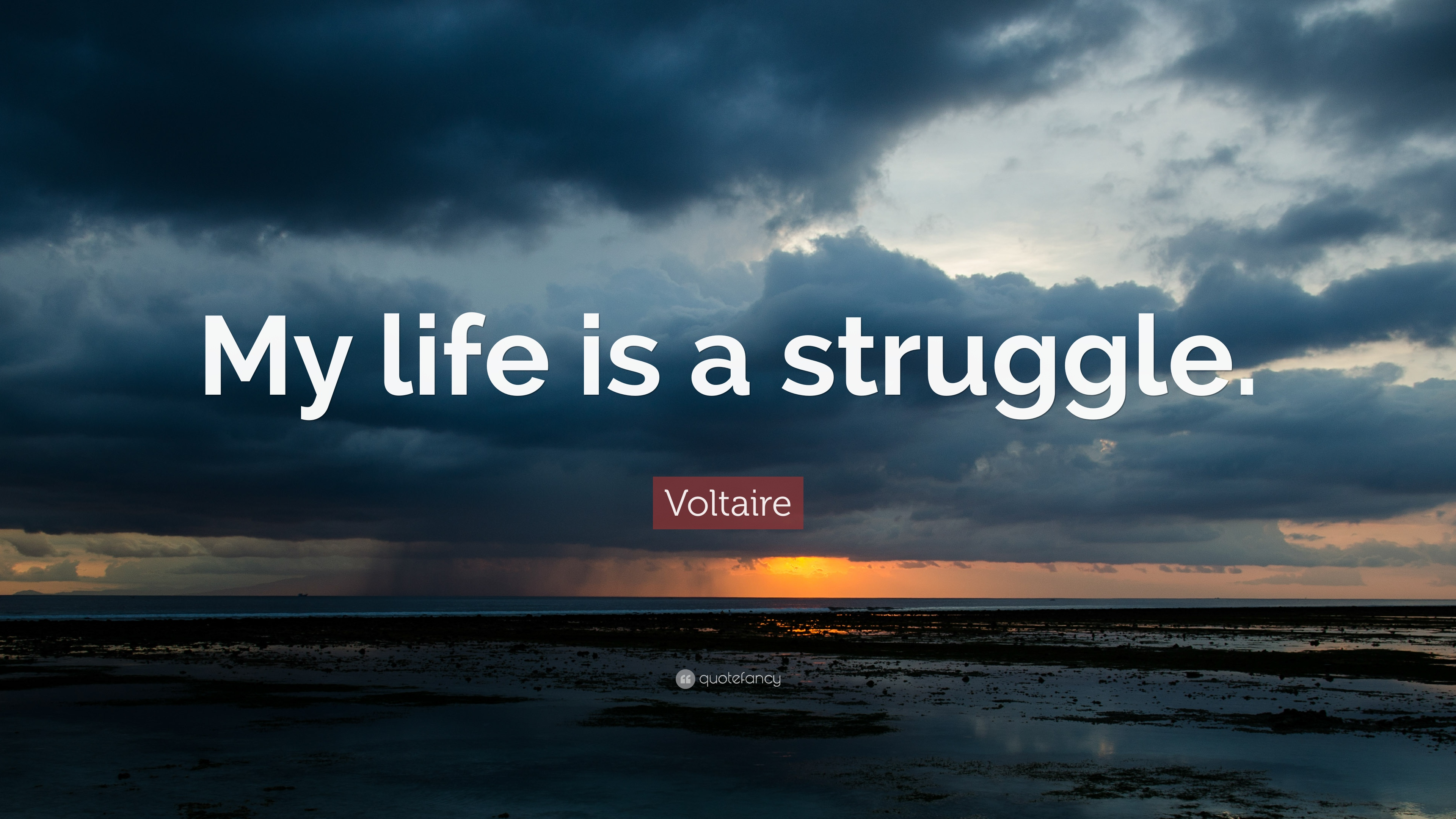 Quotes About Life Struggles Struggle Quotes 40 Wallpapers  Quotefancy