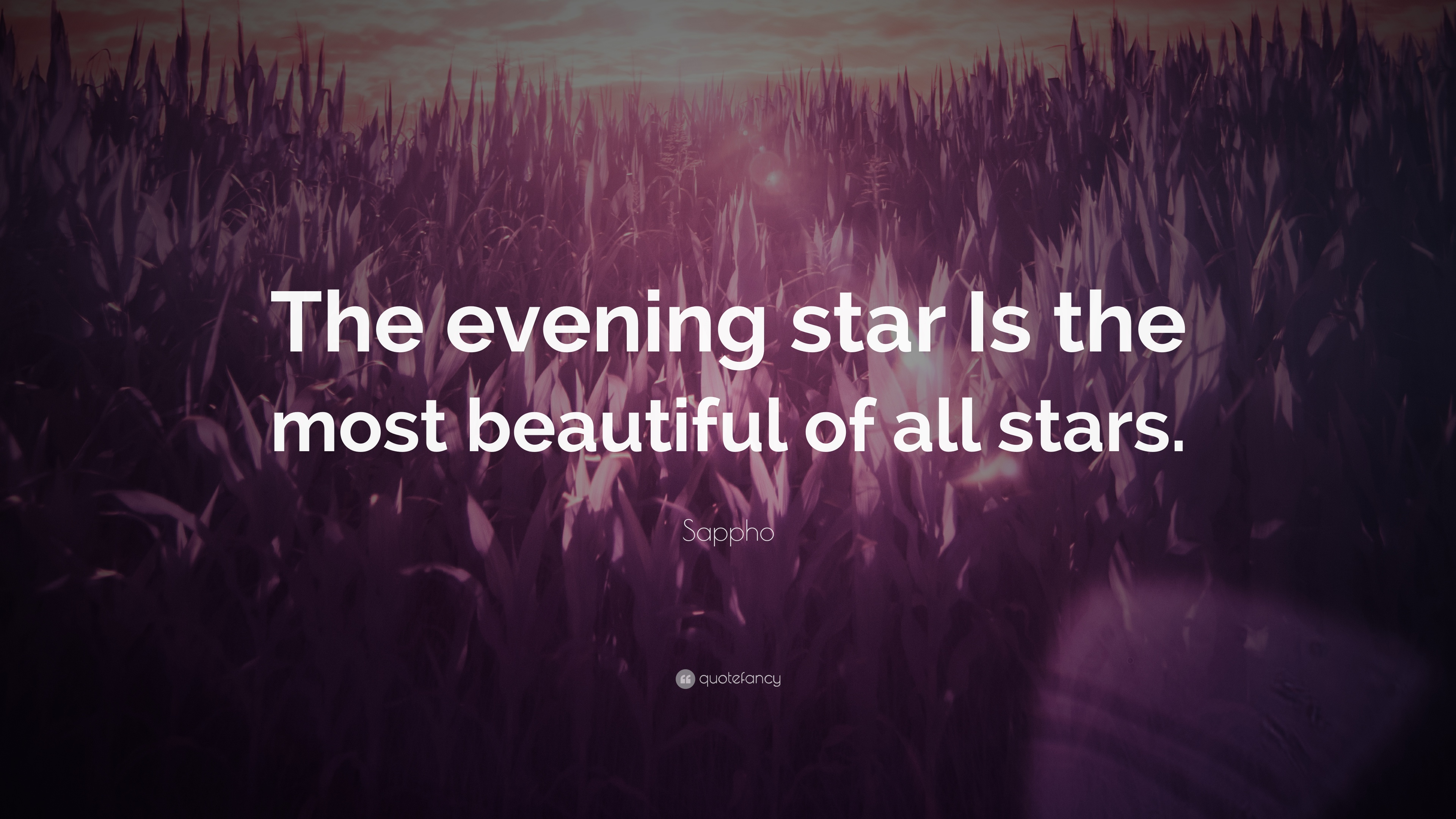 """5d447fb995bf Sappho Quote  """"The evening star Is the most beautiful of all stars ..."""