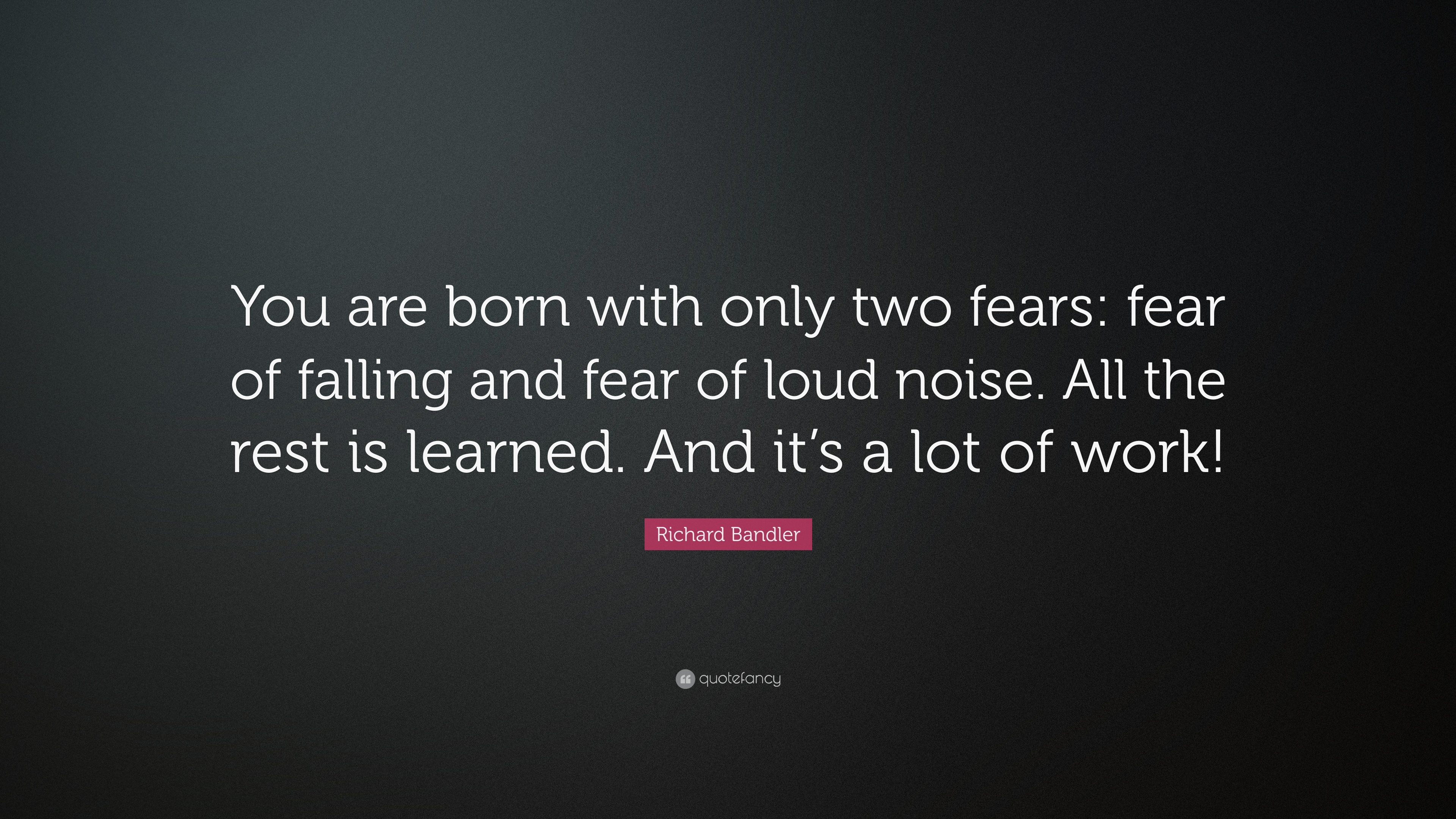 Richard Bandler Quote: U201cYou Are Born With Only Two Fears: Fear Of Falling