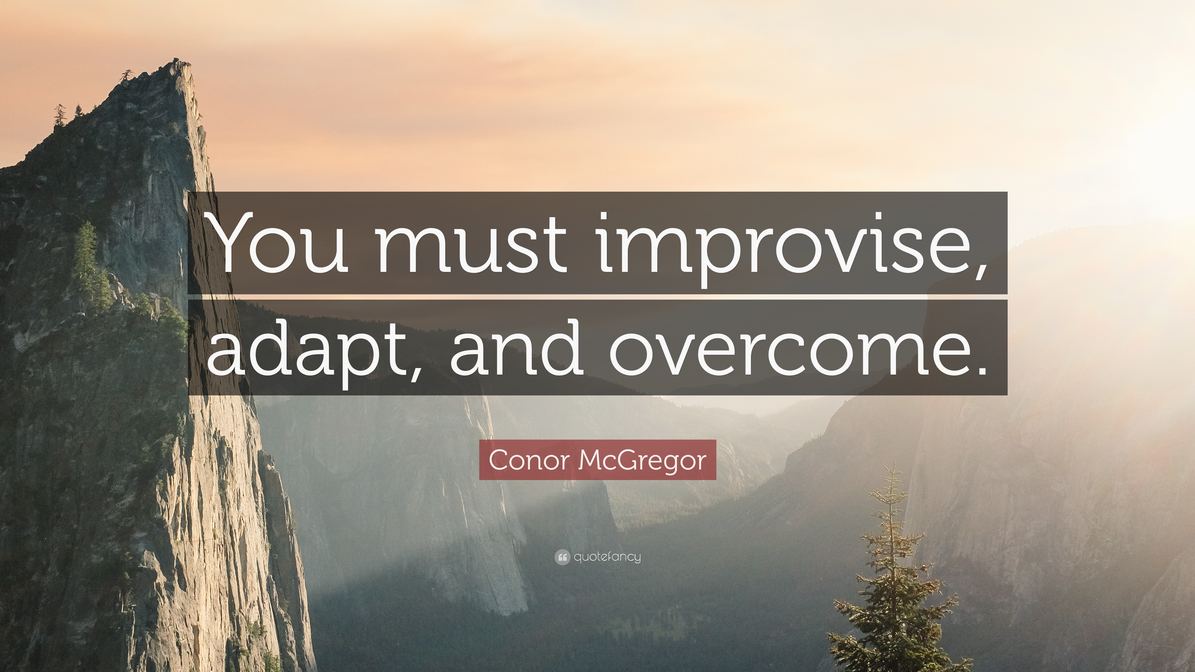 conor mcgregor quote you must improvise adapt and overcome 12