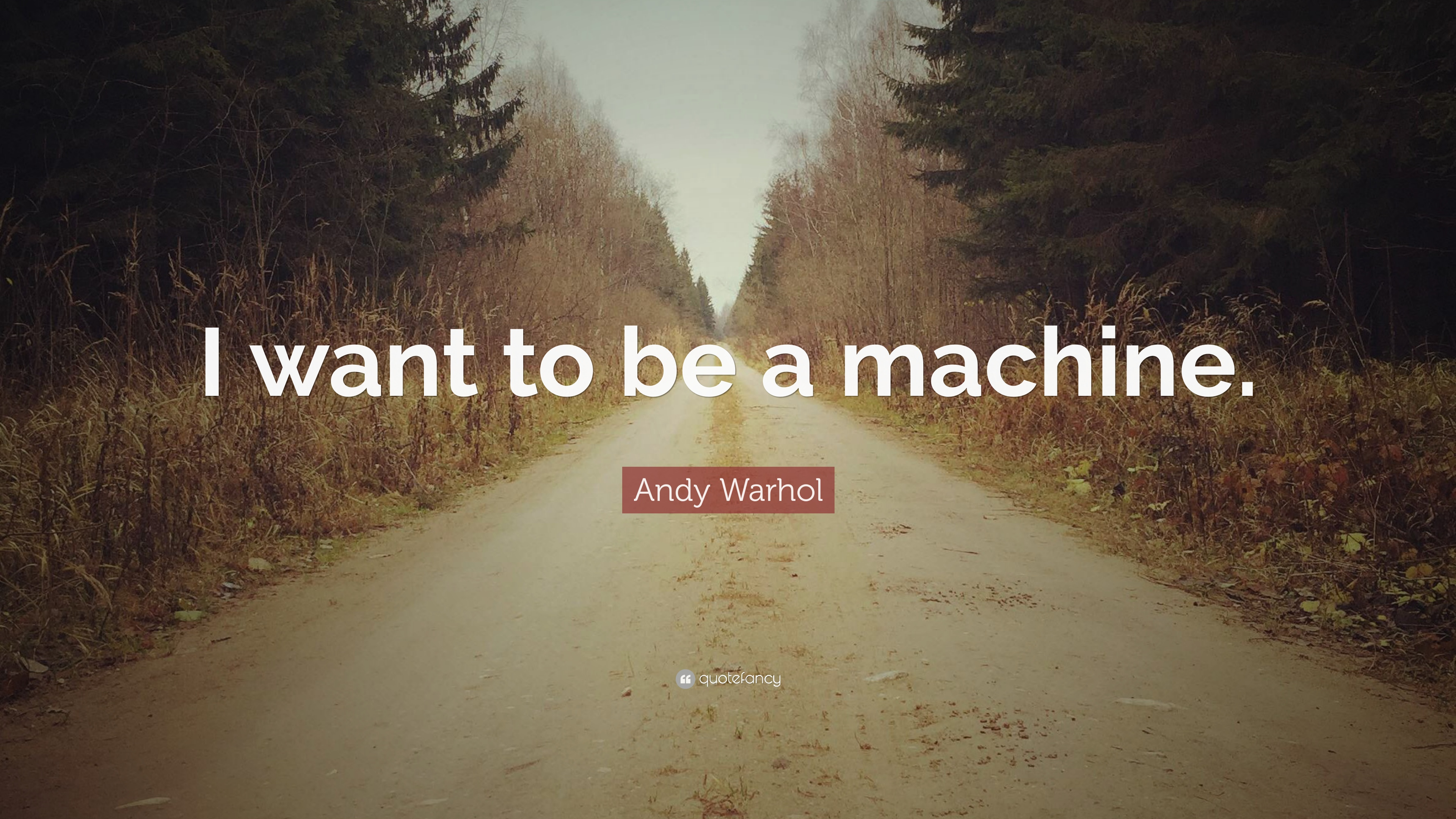 Andy Warhol Wallpaper Quotes