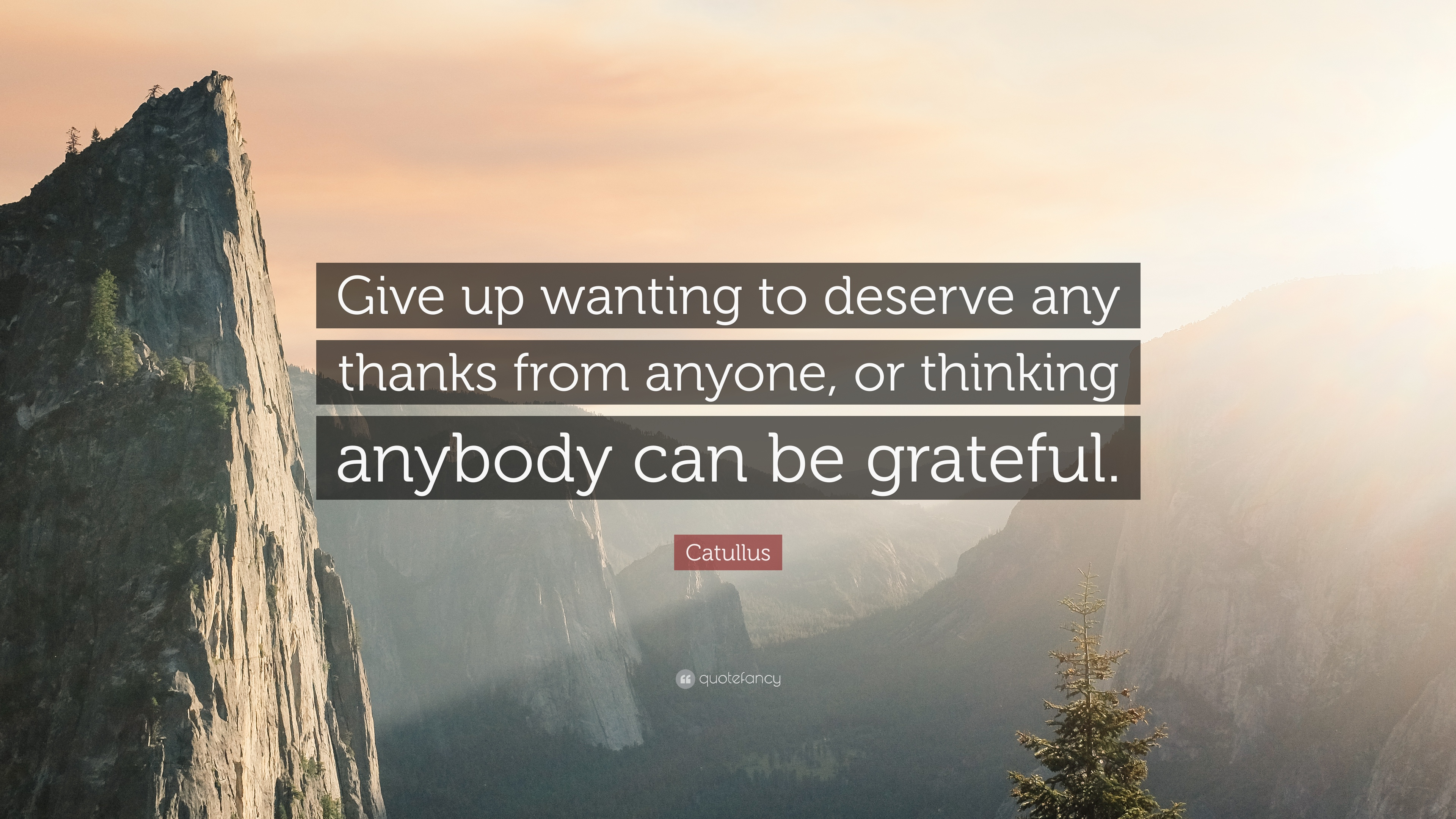 Catullus Quote Give Up Wanting To Deserve Any Thanks From Anyone