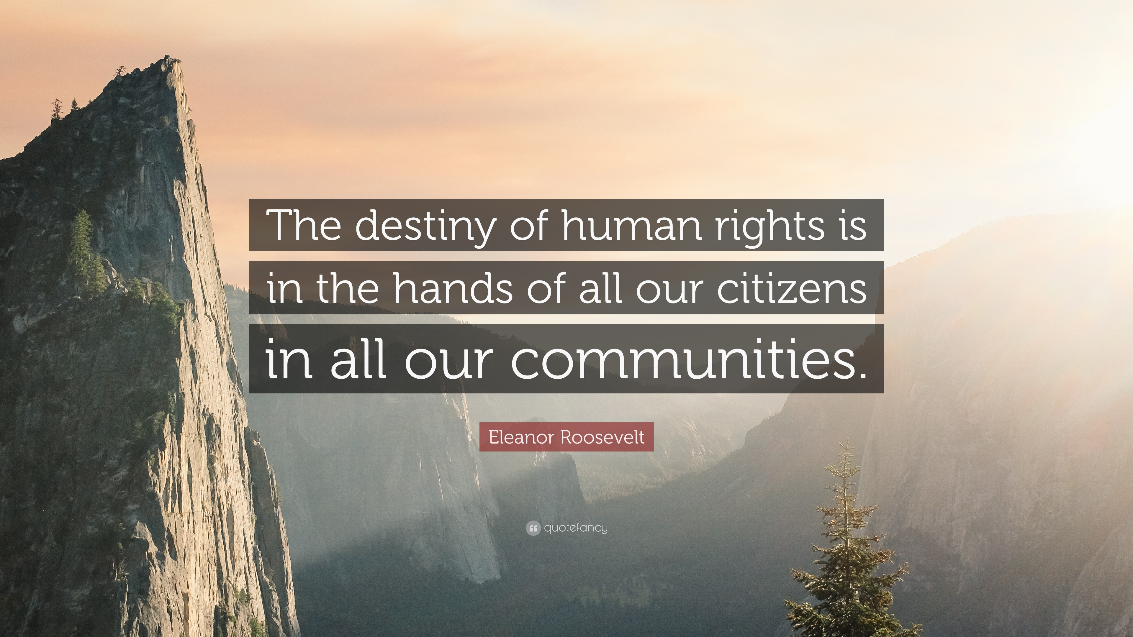 Eleanor Roosevelt Quote The Destiny Of Human Rights Is In The