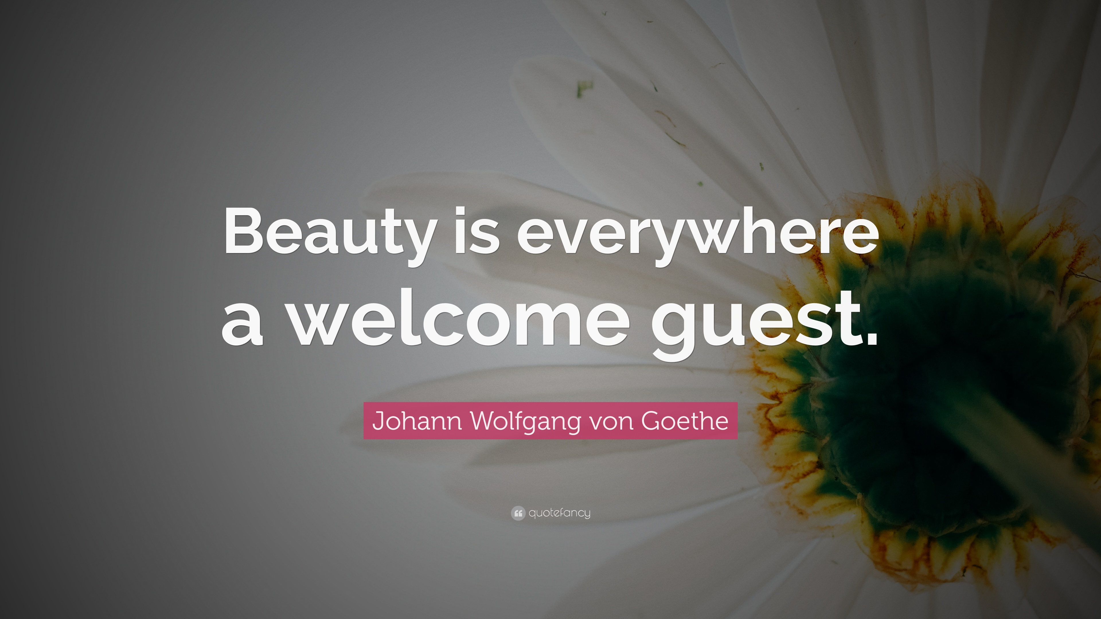 Johann Wolfgang Von Goethe Quote Beauty Is Everywhere A Welcome