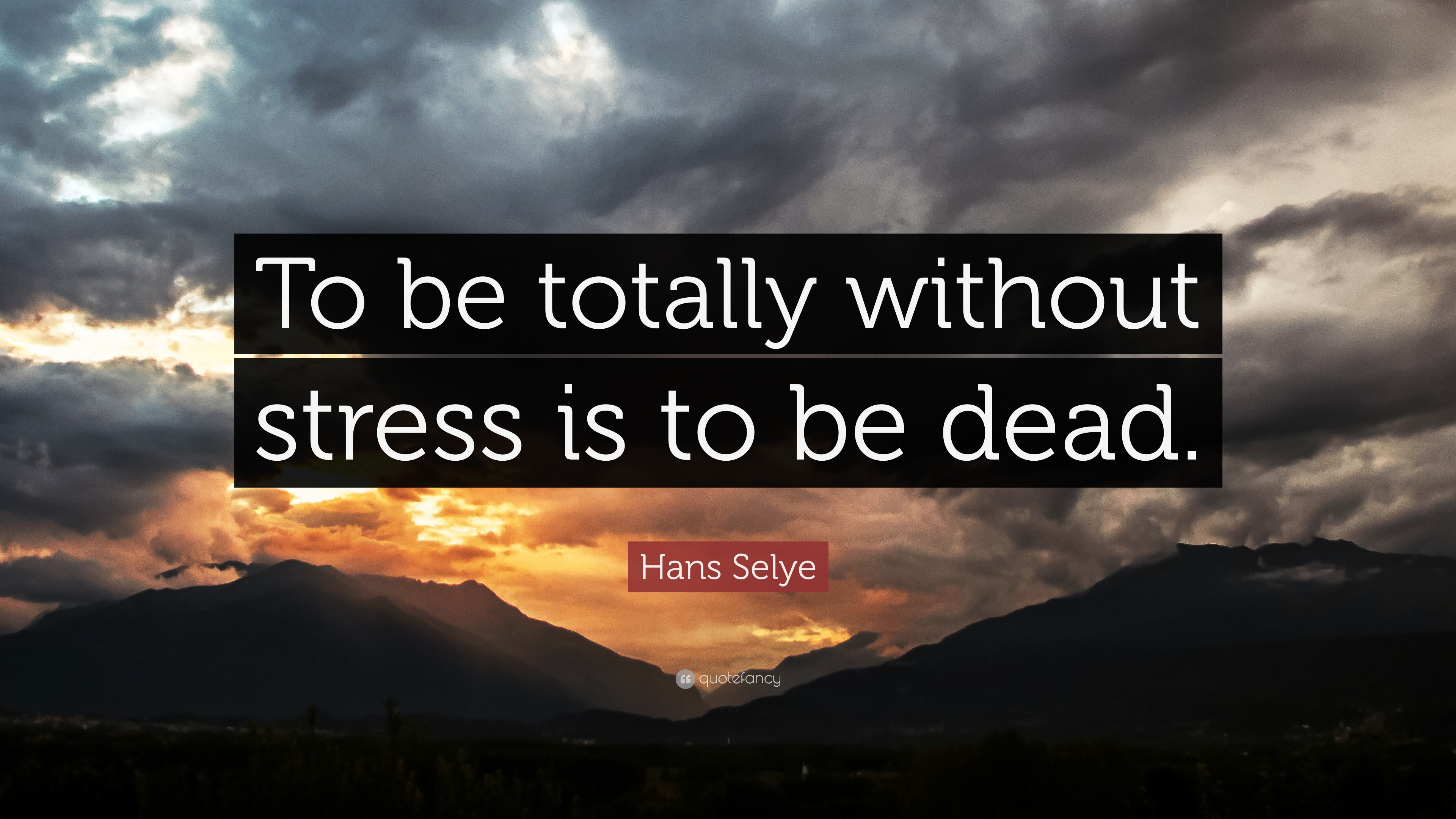 Stress Quote Pleasing Stress Quotes 40 Wallpapers  Quotefancy