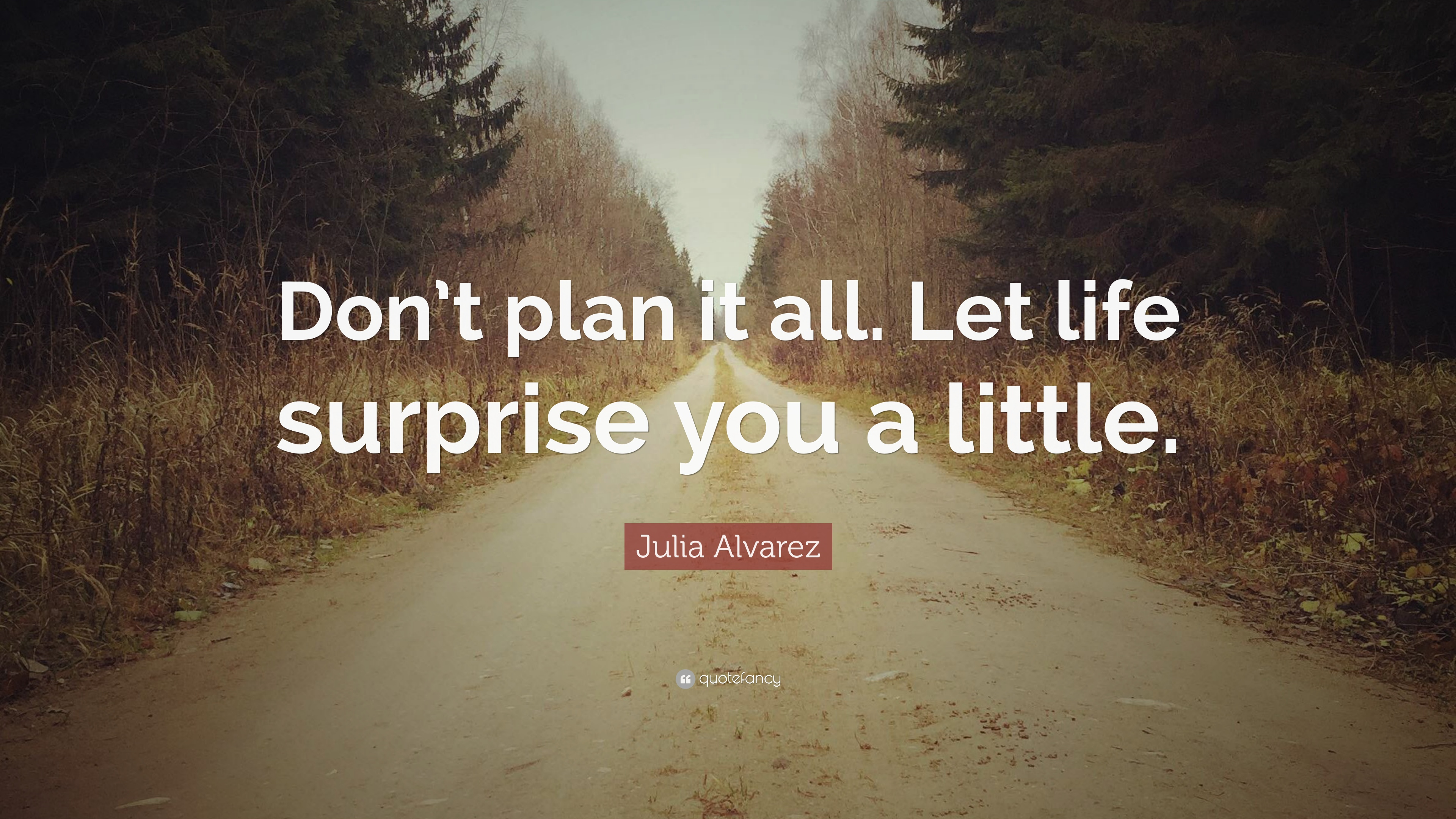 Julia Alvarez Quote Dont Plan It All Let Life Surprise You A