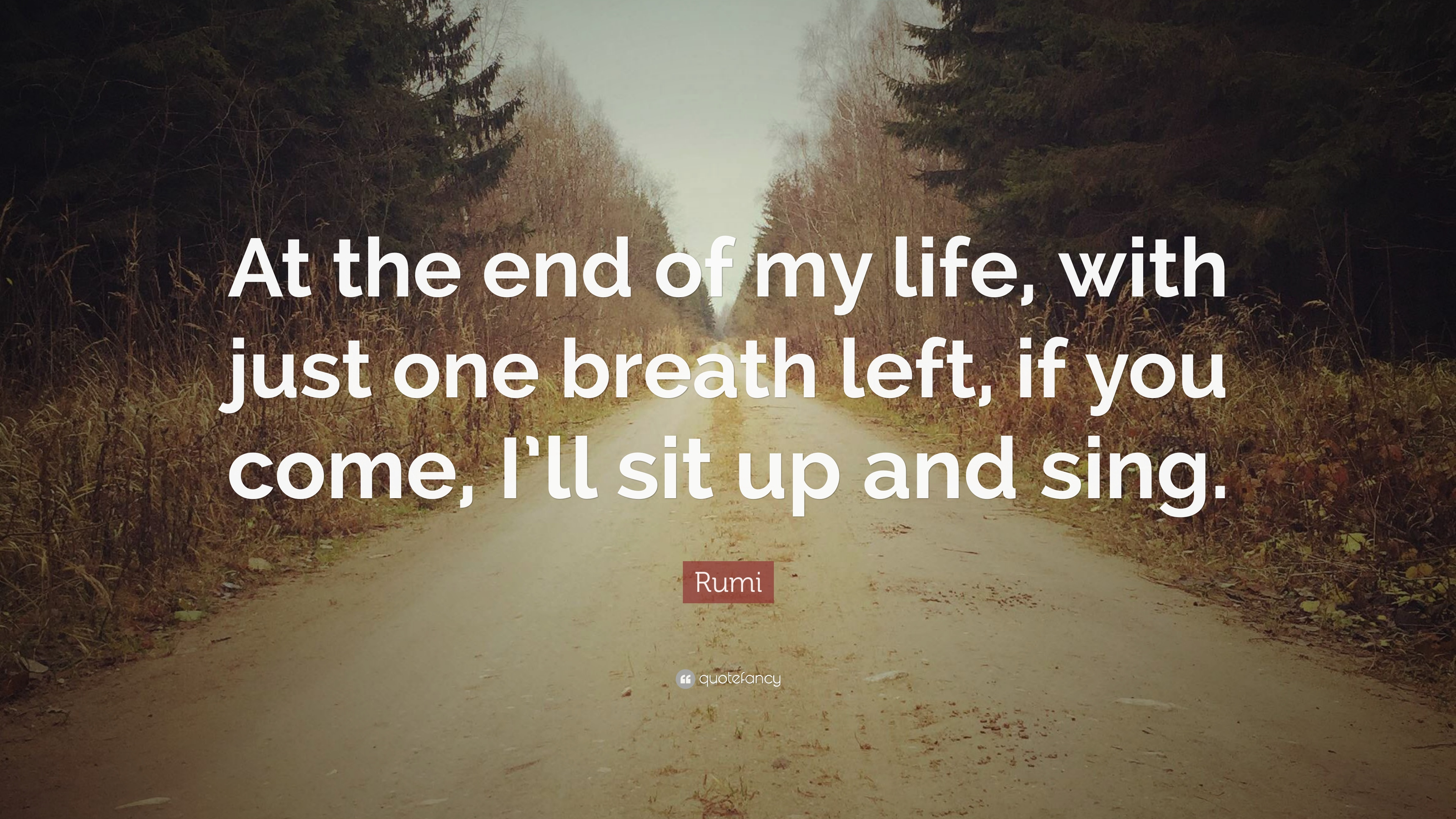 End Life Quotes: Rumi Quotes (100 Wallpapers)